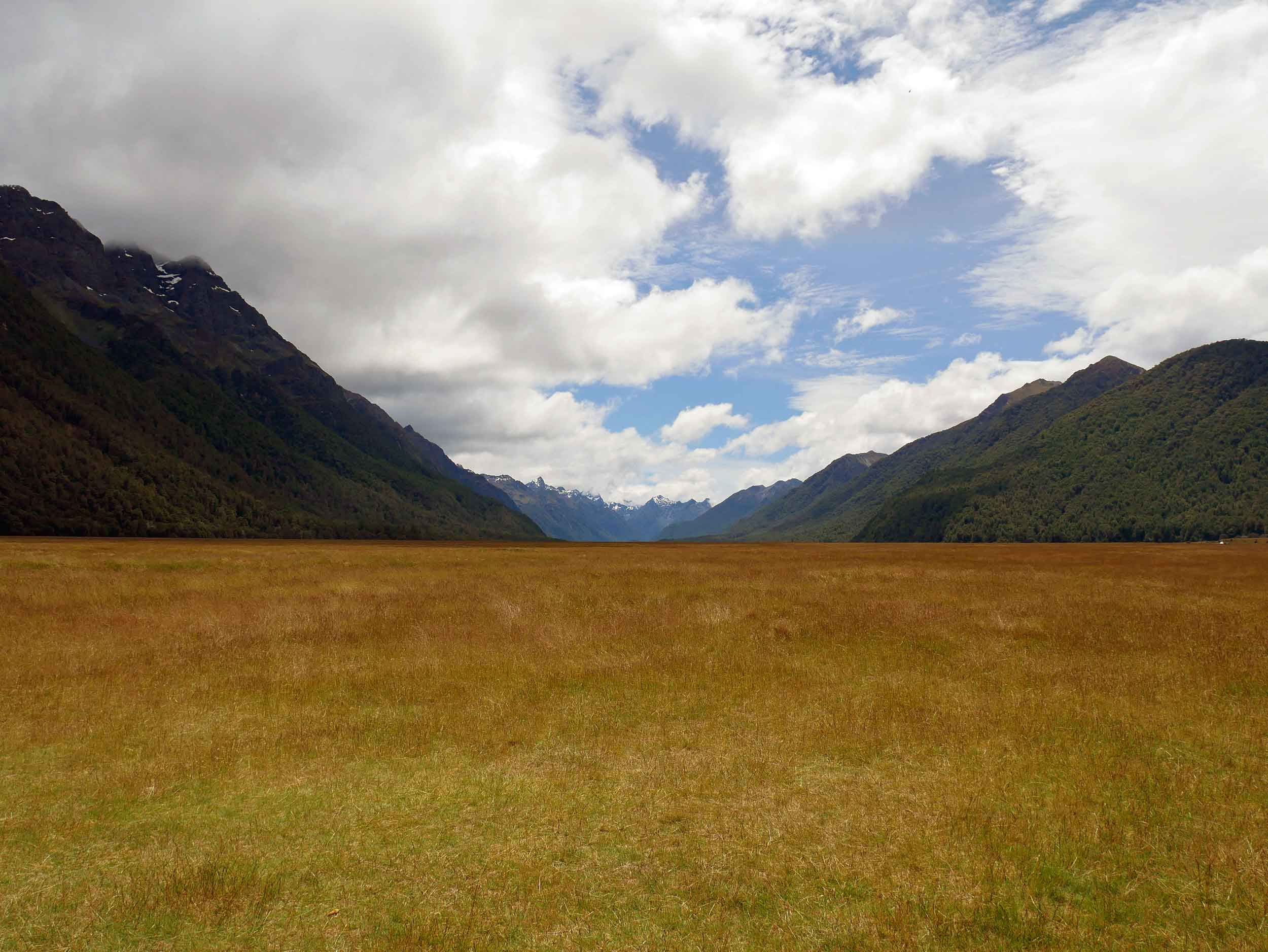 Along the Milford Road, we stopped and camped overnight in Eglinton Valley, once filled with glacial ice (Jan 8).