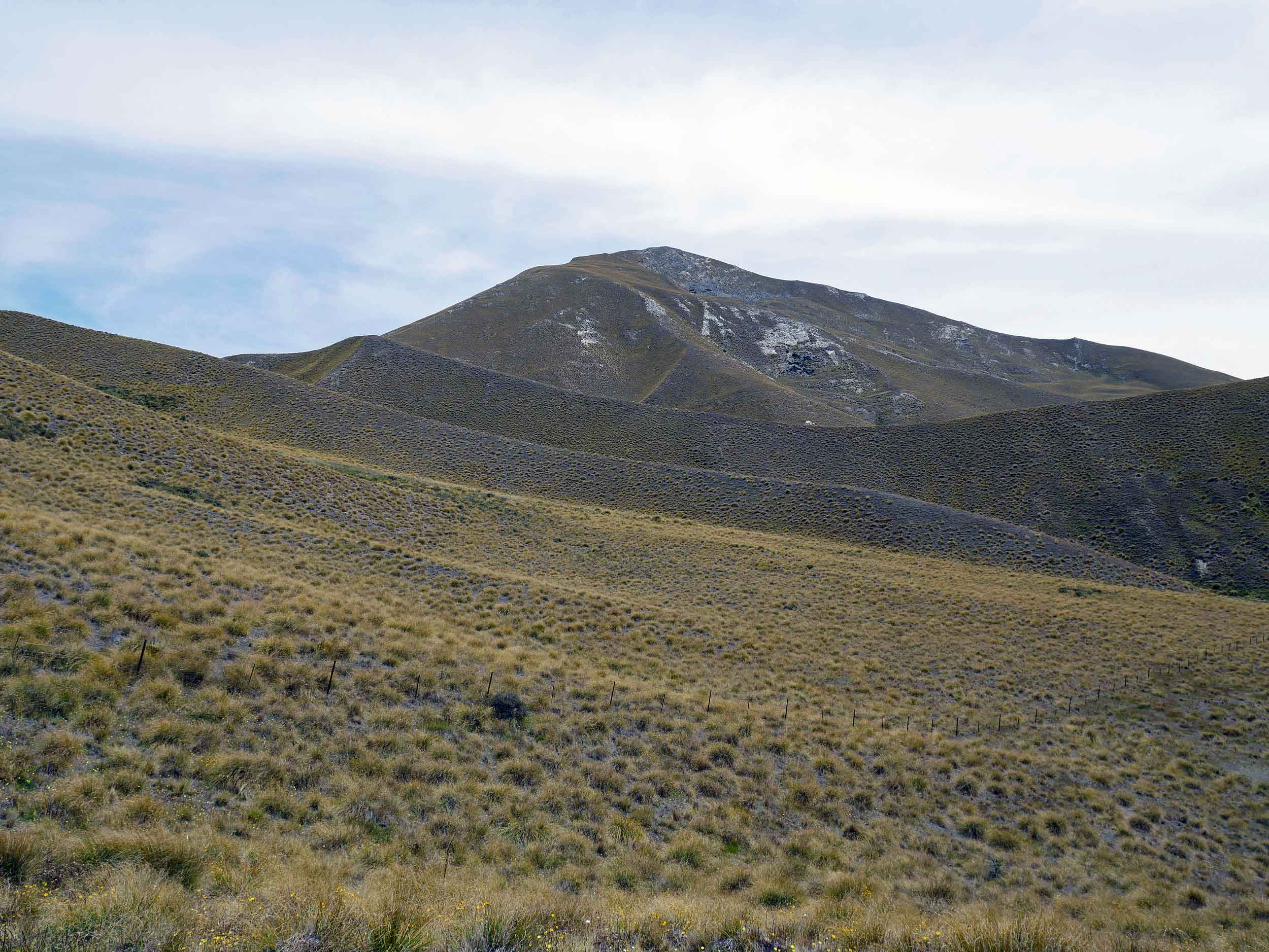 Driving north past Queenstown, the landscape becomes hot and arid with hills covered in tussock (Jan 10).