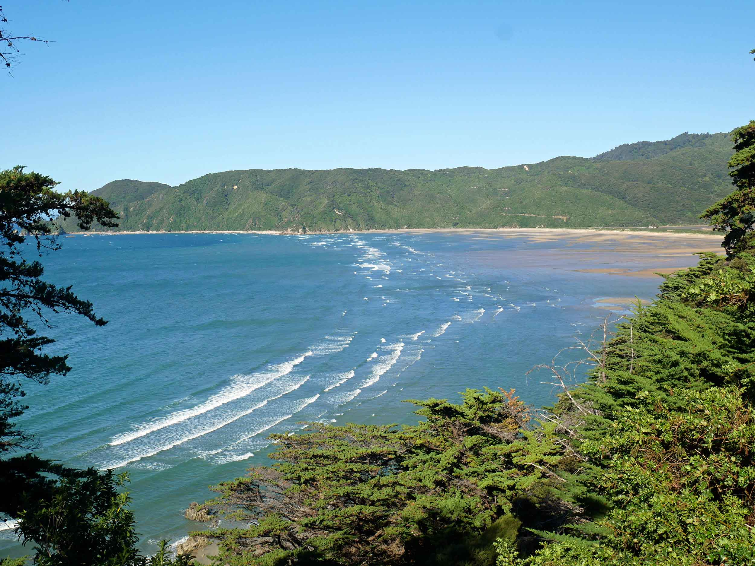 The rolling, windswept waves of Wainui Bay reminded us of the beaches of Hawaii (Jan 16).