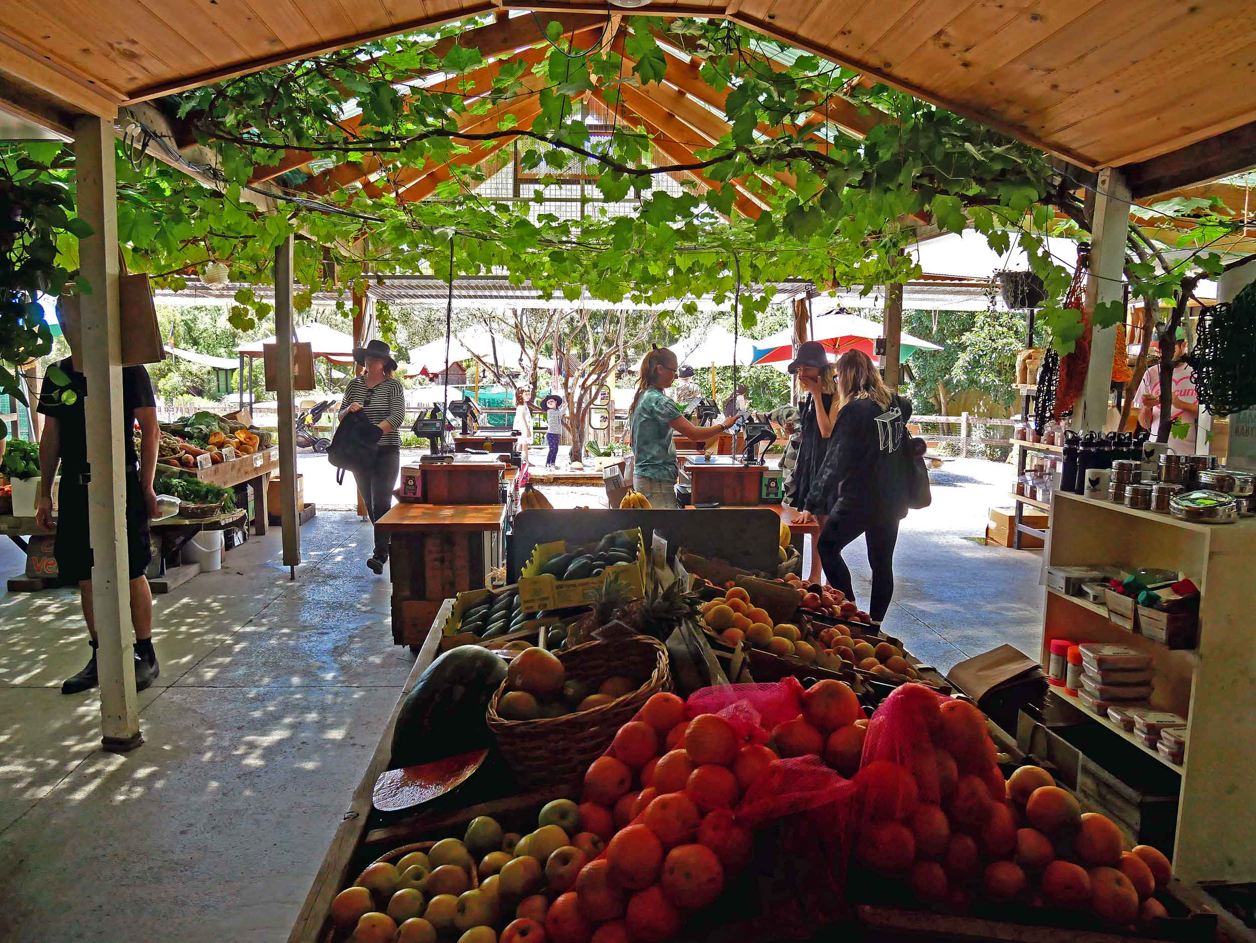 CERES offers a delicious spread of locally sourced fare on offer at their market (Jan 26).
