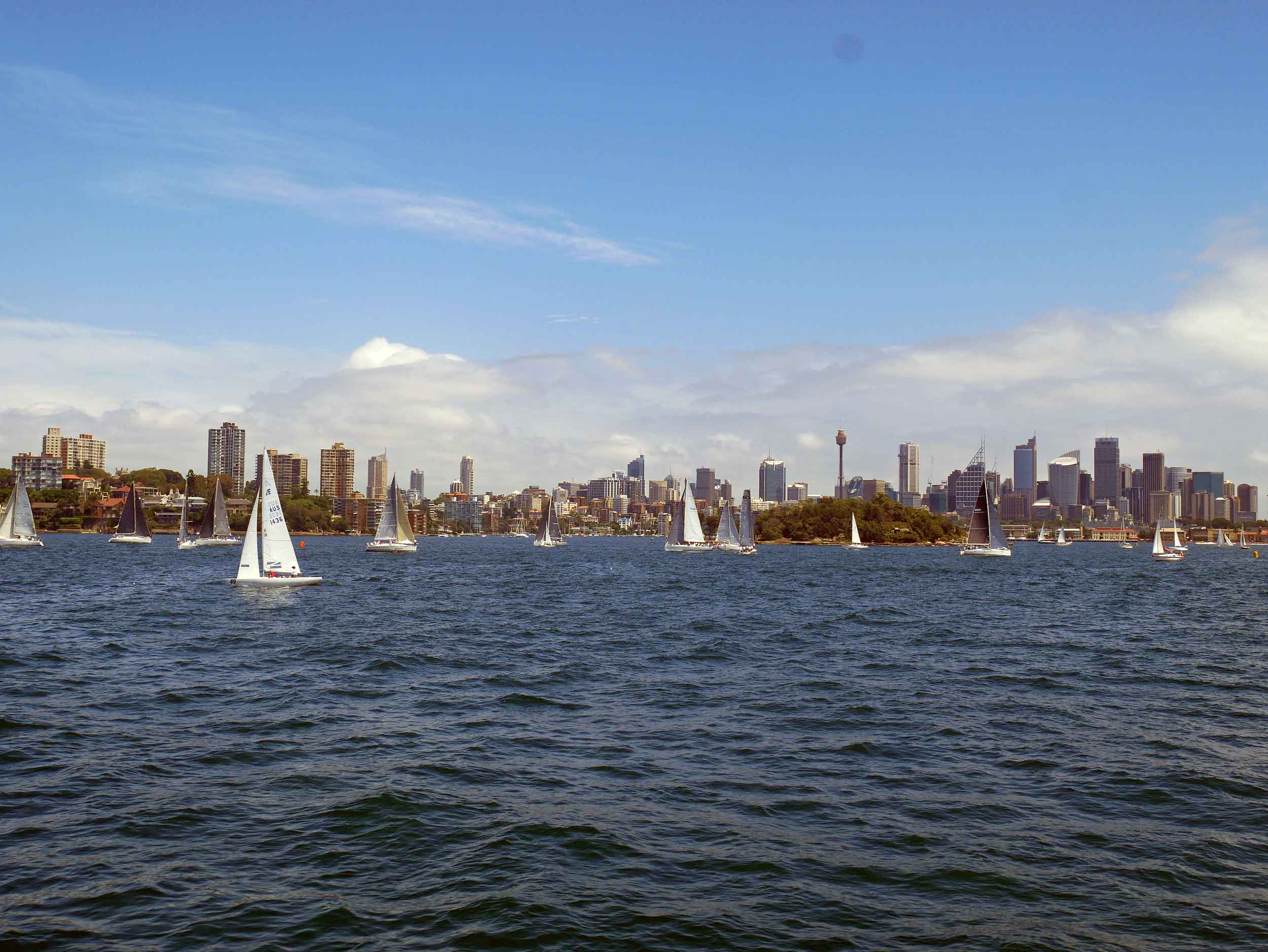 The Harbour was full of sails and watercraft attempting to beat the heat (Feb 4).