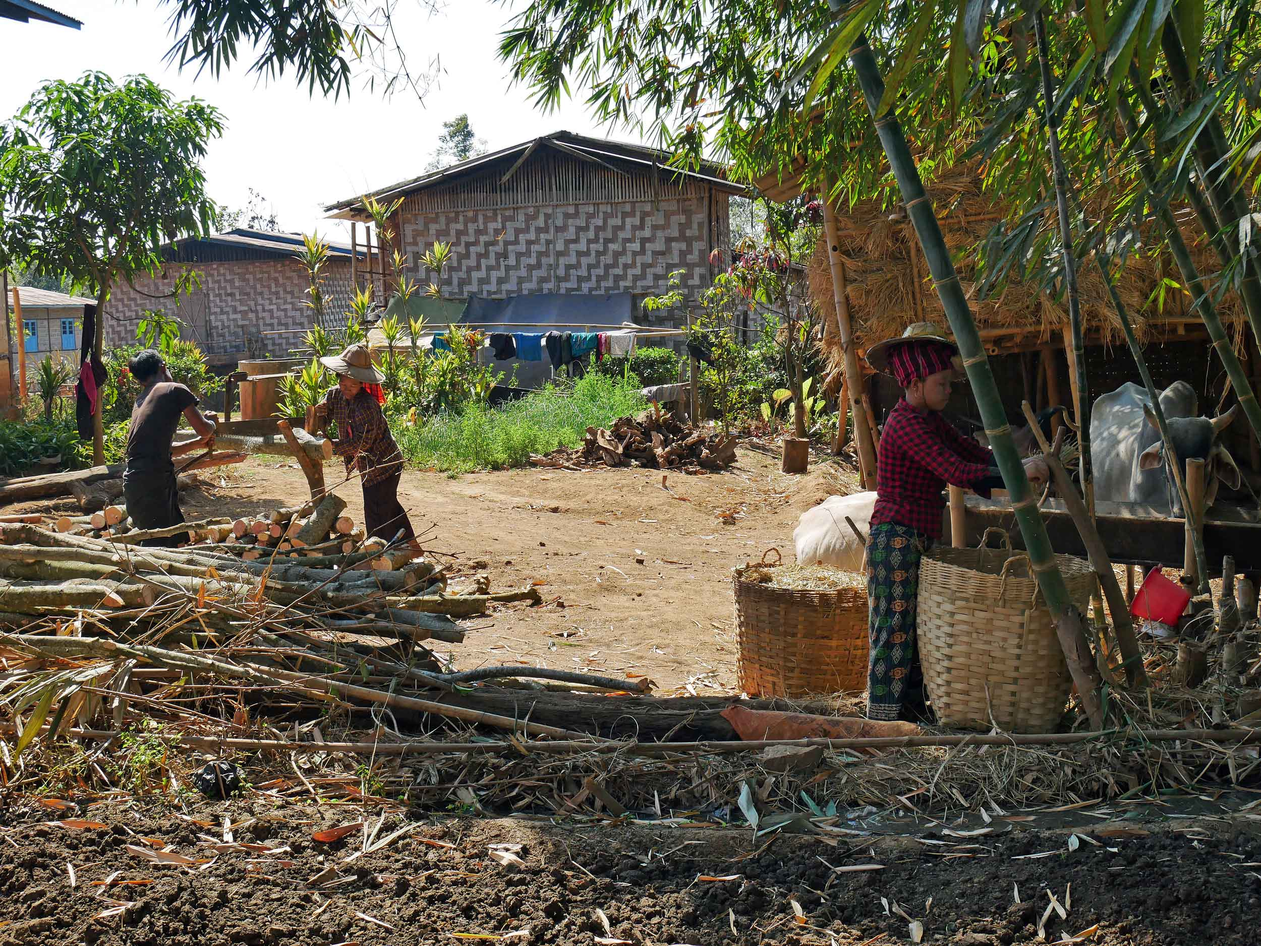 Work in the villages ranges from working in the fields to weaving bamboo for housing or baskets to cutting firewood for cooking and warmth (Feb 20).