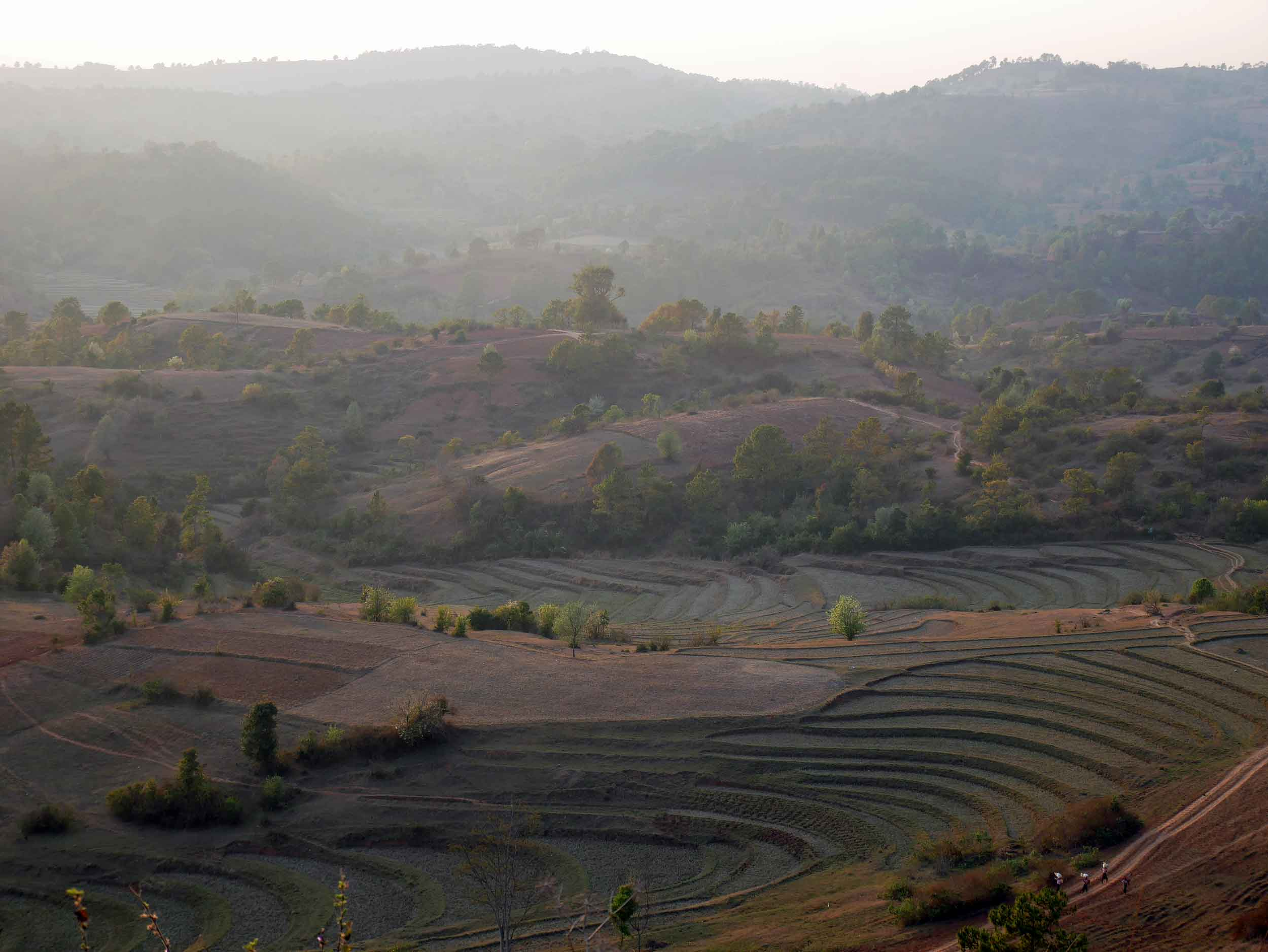 The 2-day hike wandered across farmland, over hills, and through tribal villages to Inle Lake (Feb 20).