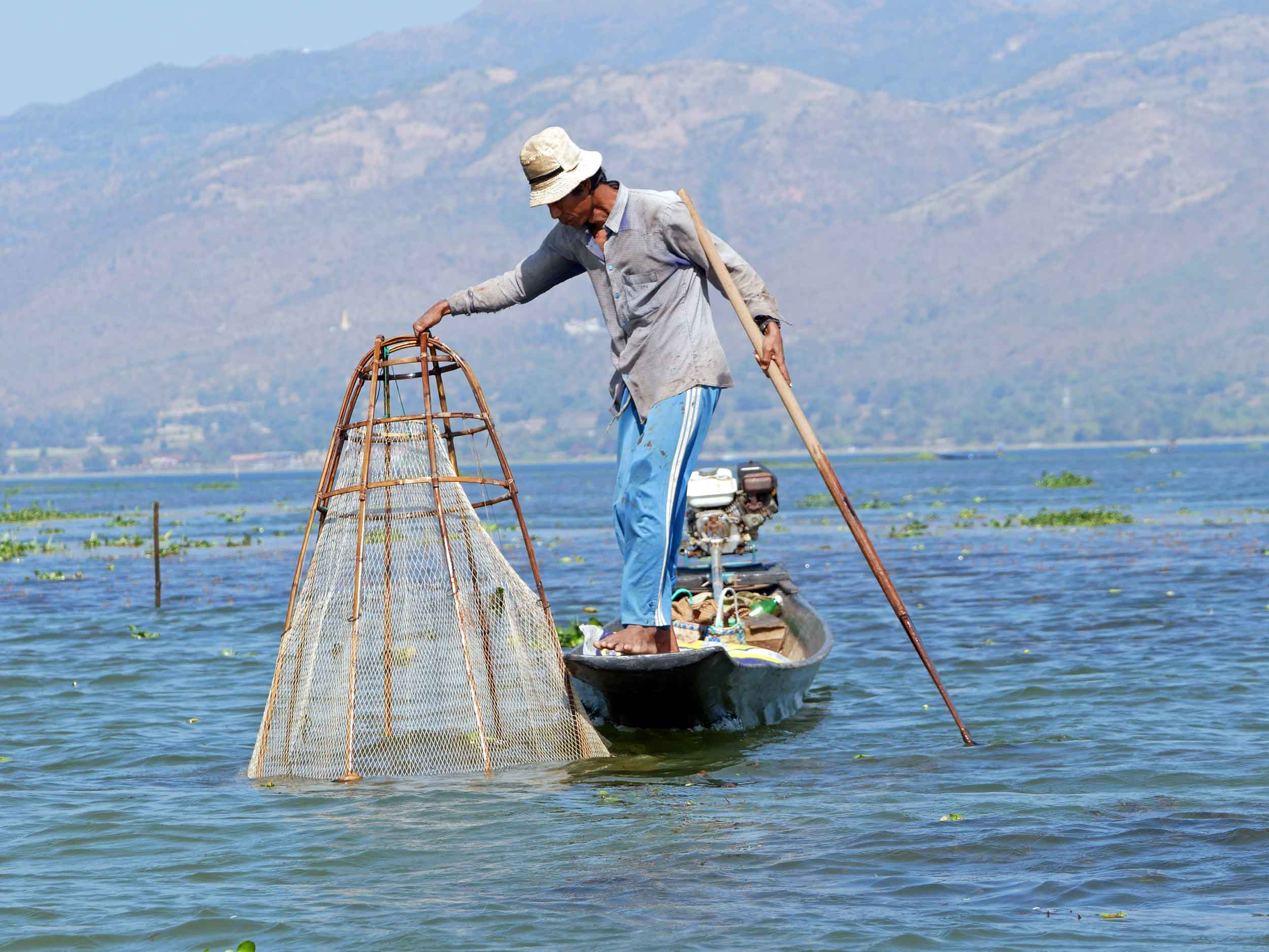 Bursting with life, Inle boasts several endemic species, providing opportunity for local fishermen (Feb 21).