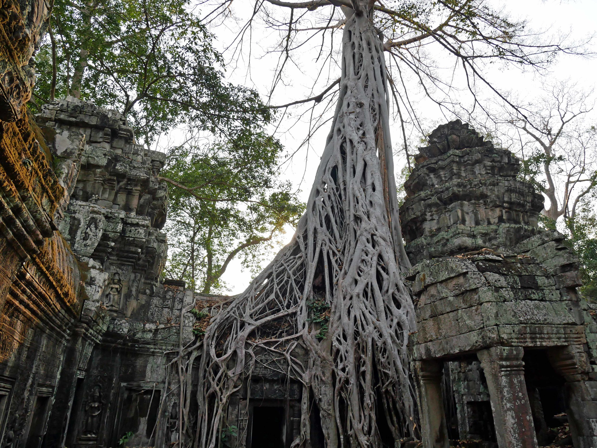 Records state that more than 12,500 people called Ta Prohm home upon its founding (Feb 27).