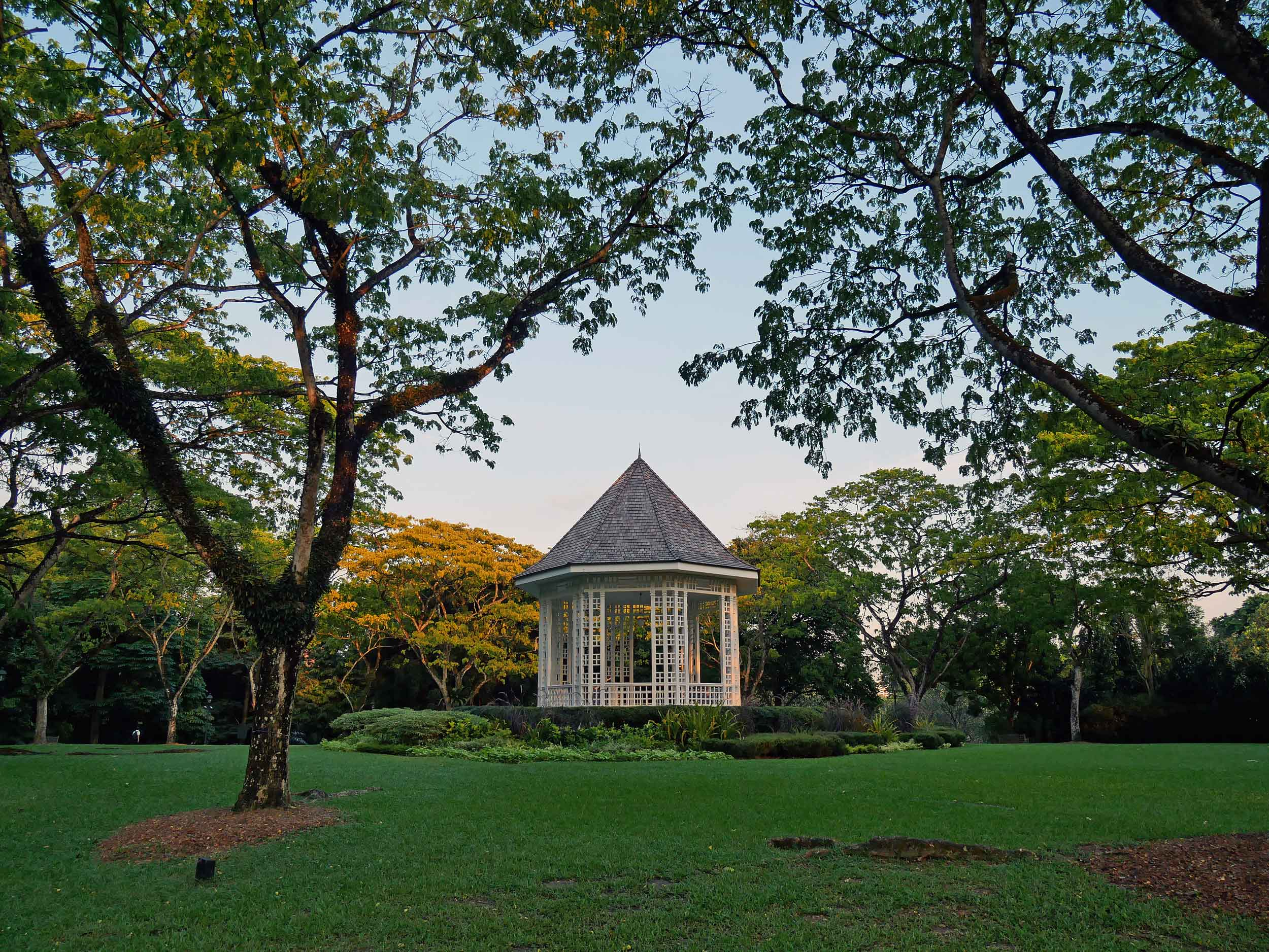 As the sun began to set on our first day, we checked out the beautiful Singapore Botanic Gardens.