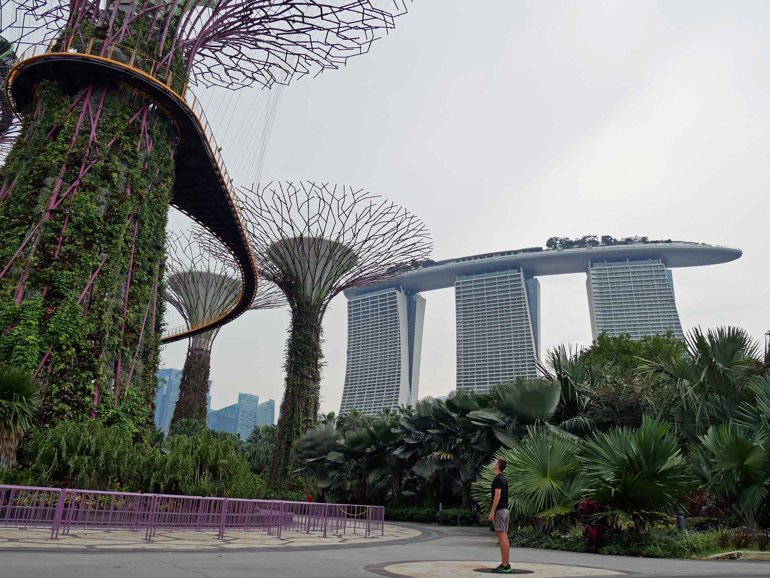 The next morning, we visited Gardens by the Bay, which lies in the shadow of towering Marina Bay Sands (April 29).