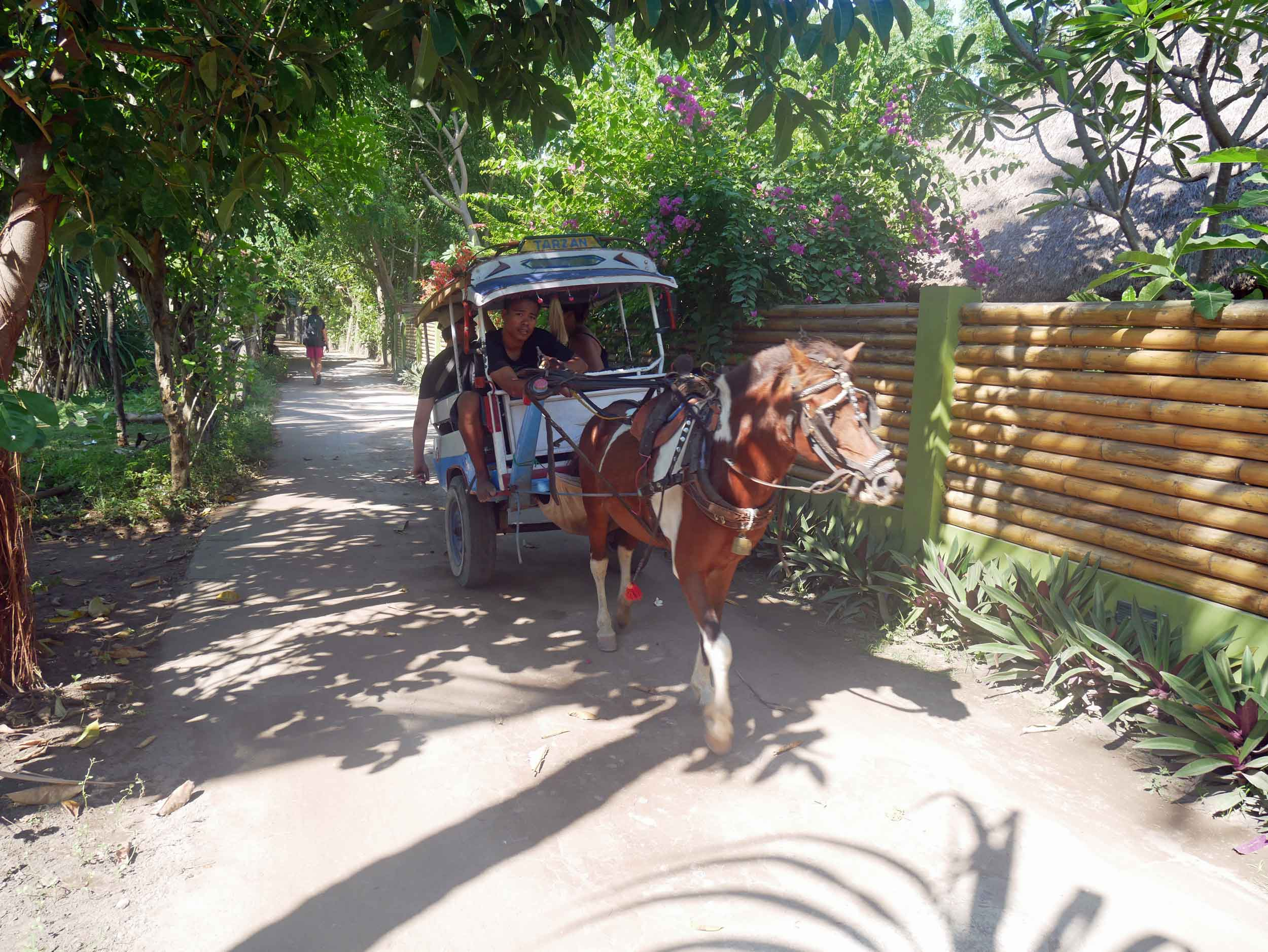 Arriving on Gili Air, where horse and buggy are the only option for those with heavy loads (May 18).