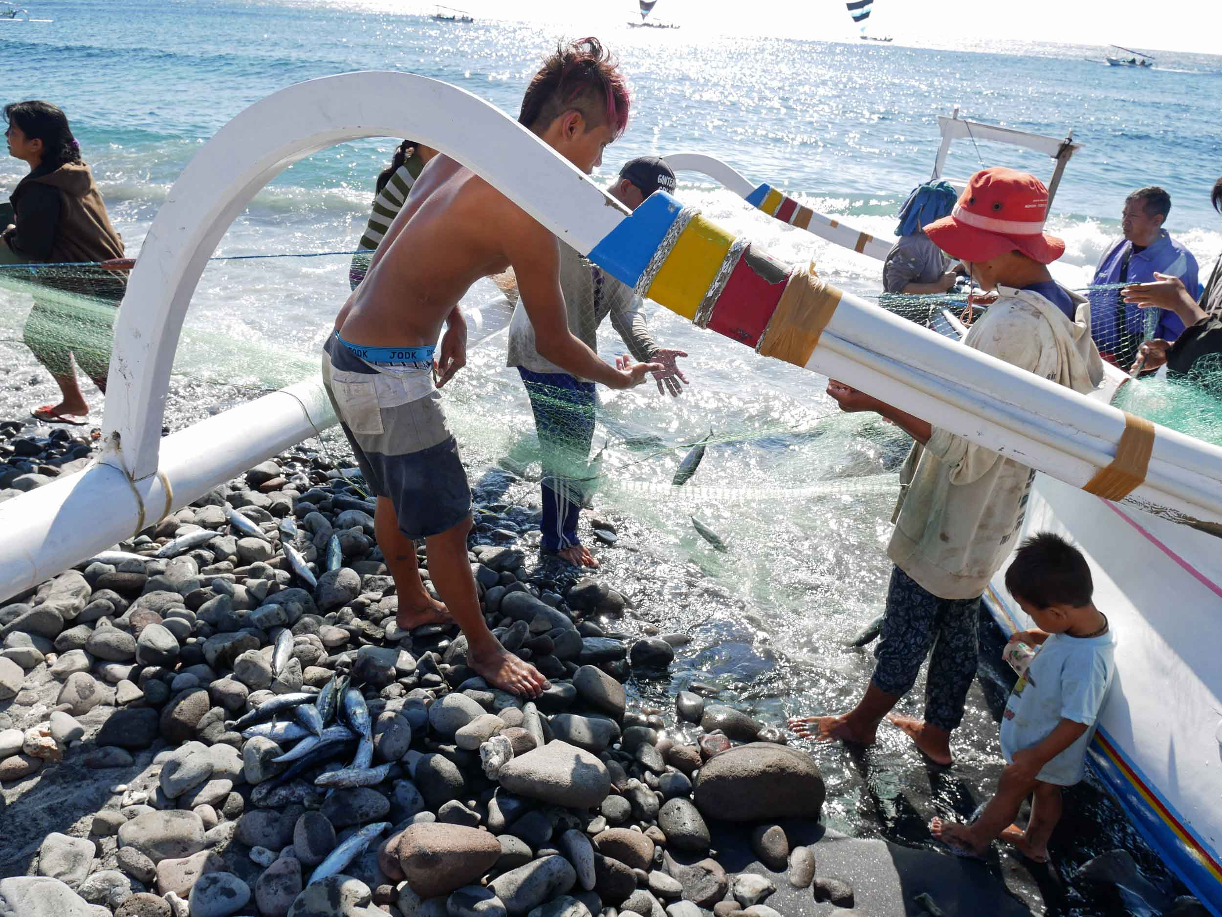Once ashore, the fishermen unspool their nets and place the fish into buckets or bags.