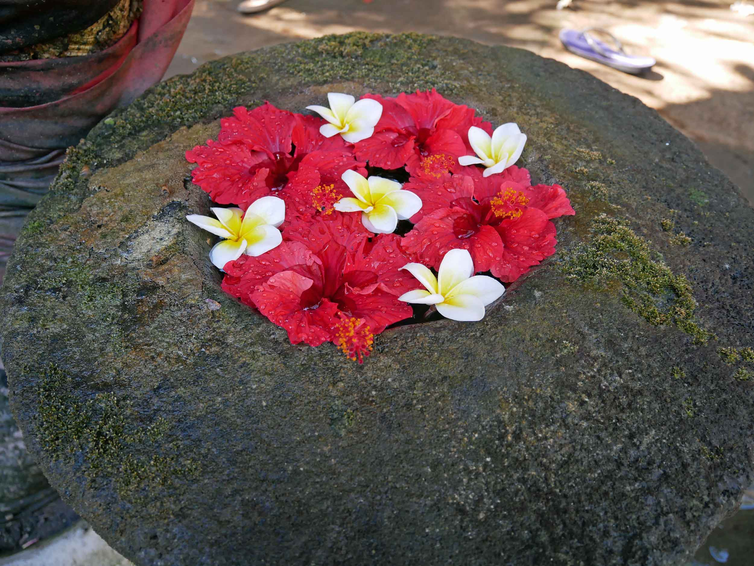 Fresh tropical flowers from the Meditasi property were placed throughout the hotel and its private shrine.