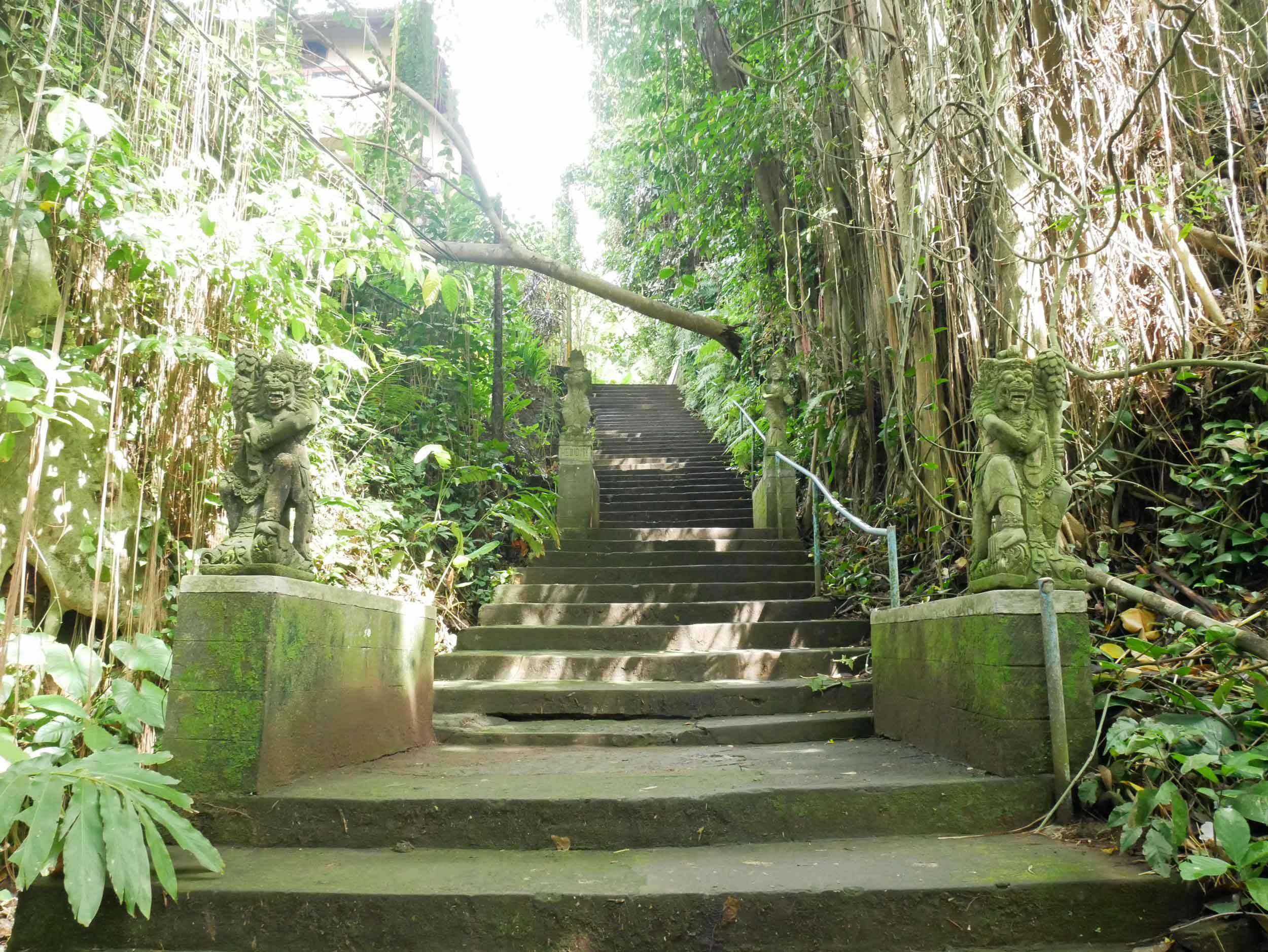In the heart of the island, green was everywhere, even covering the stairs we took to reach morning yoga.