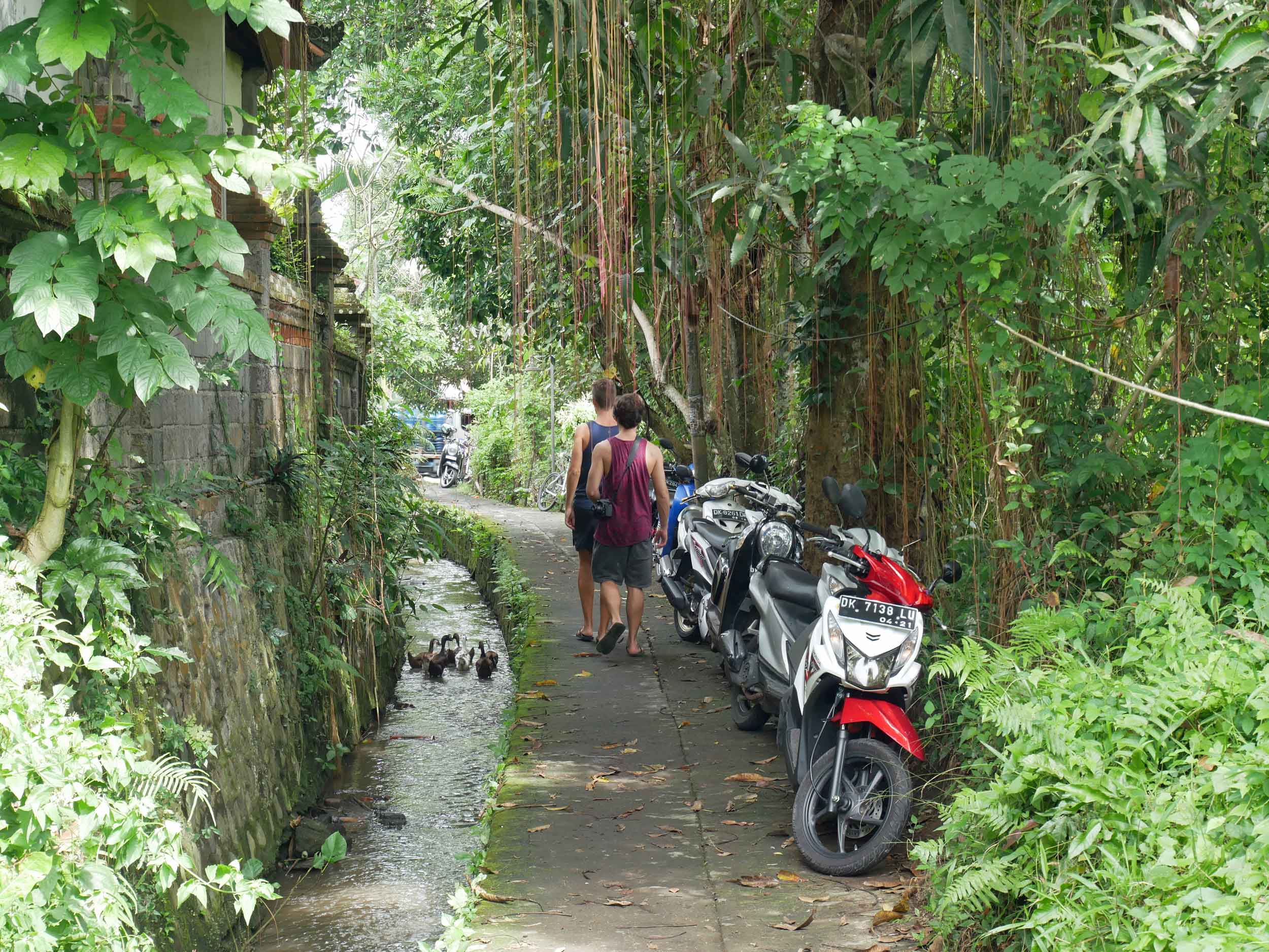 We were fortunate to be close to an excellent yoga studio and wonderful cafes, so we spent most of our time in Ubud walking the small pathways to get whereever we were going.