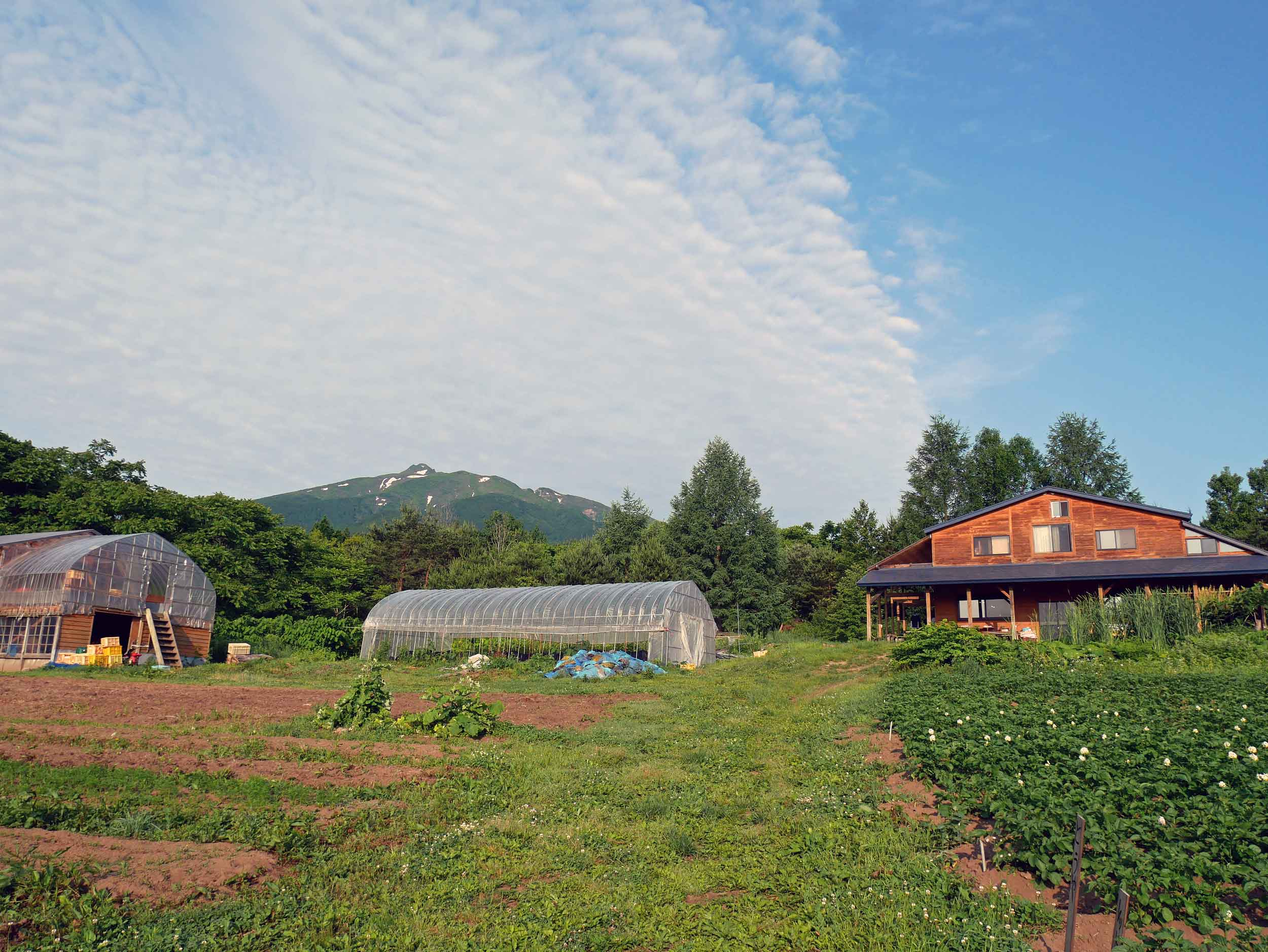 Bucolic Shiratori Family Farm in northern Japan with Mt. Iwaki in the background, and yes, that is still snow on the peak in mid-June.