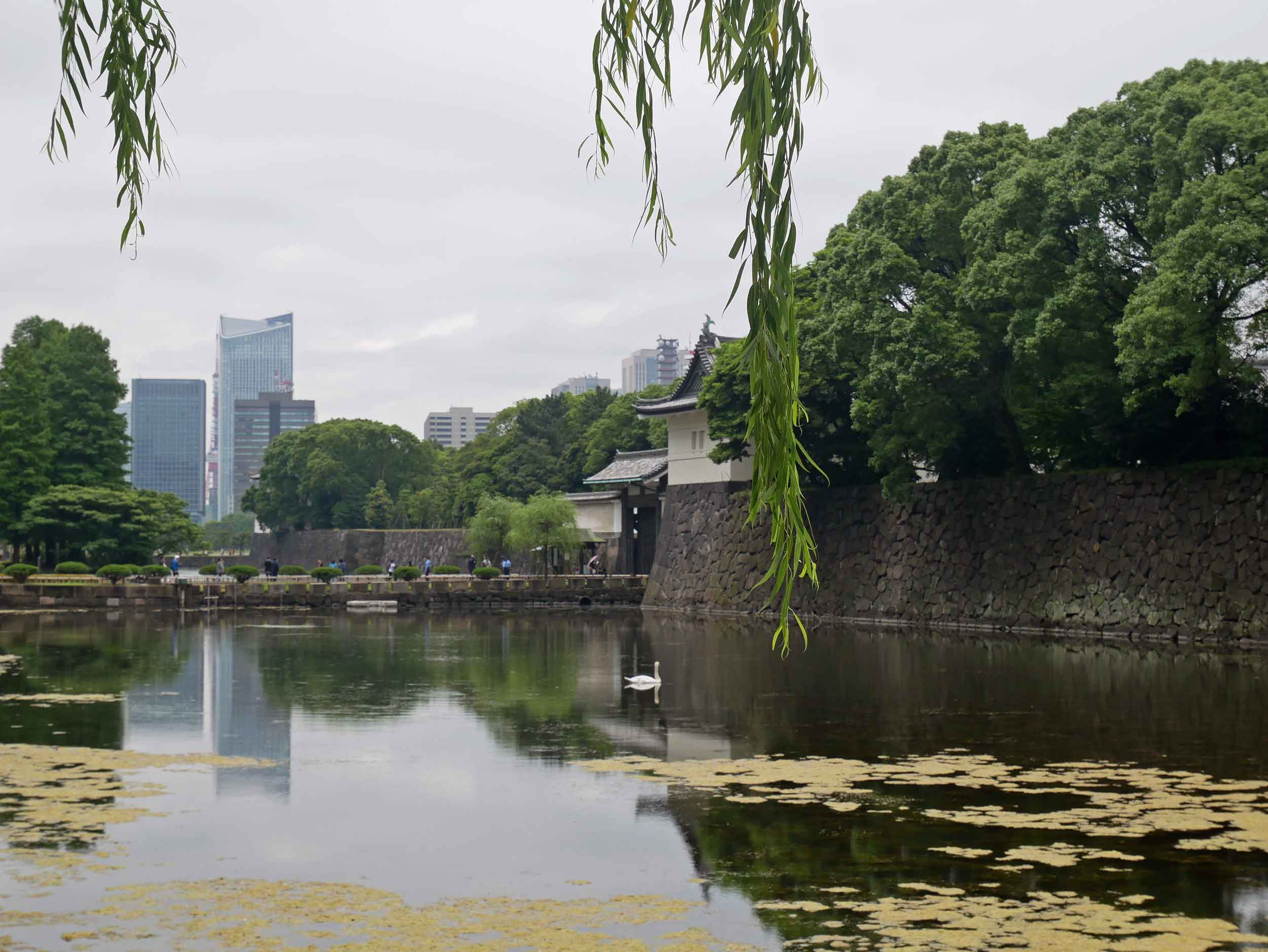 Tokyo's Imperial Palace Gardens is a respite within the chaos of the city (June 14).