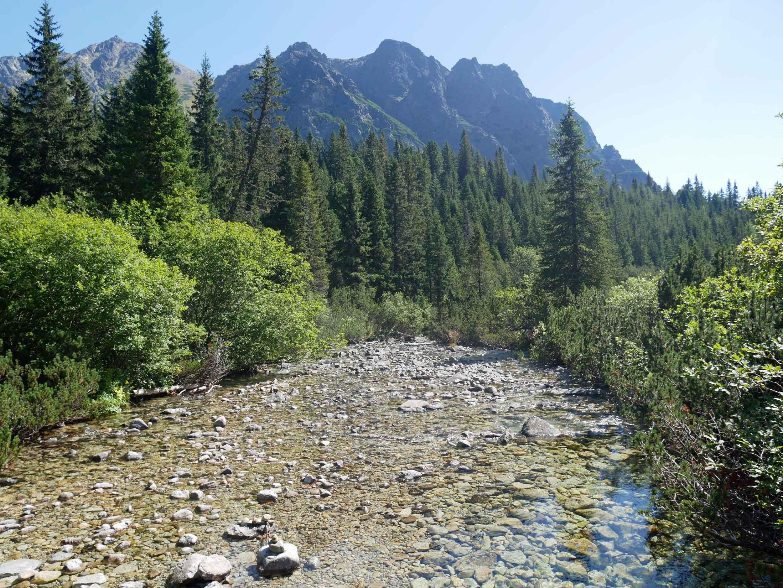 Resplendent waterways keep this region lush and green.