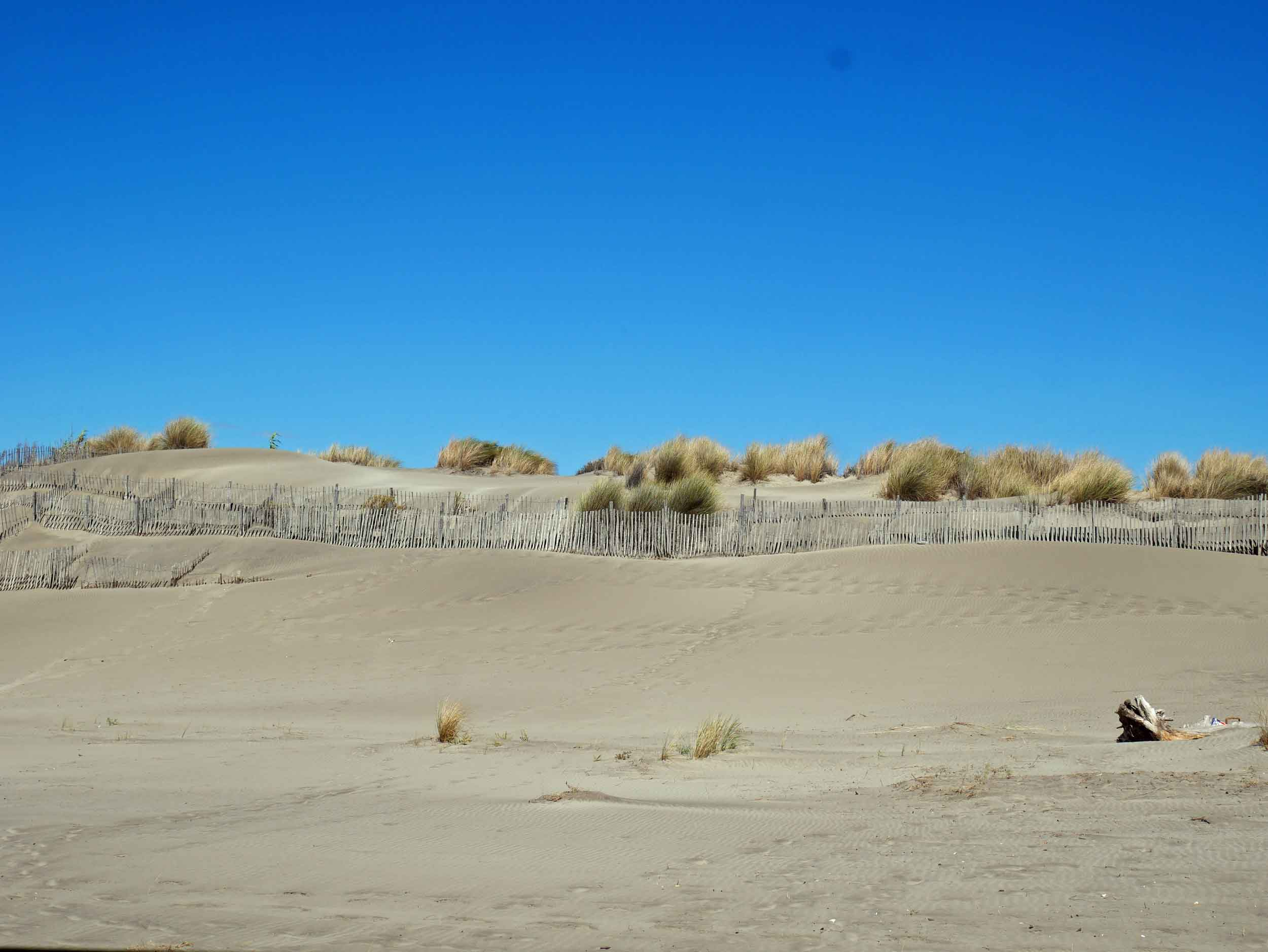 The stunning Camargue Park and Plage de l'Espiguette has miles of rugged coastline and protected dunes (Sept 13).