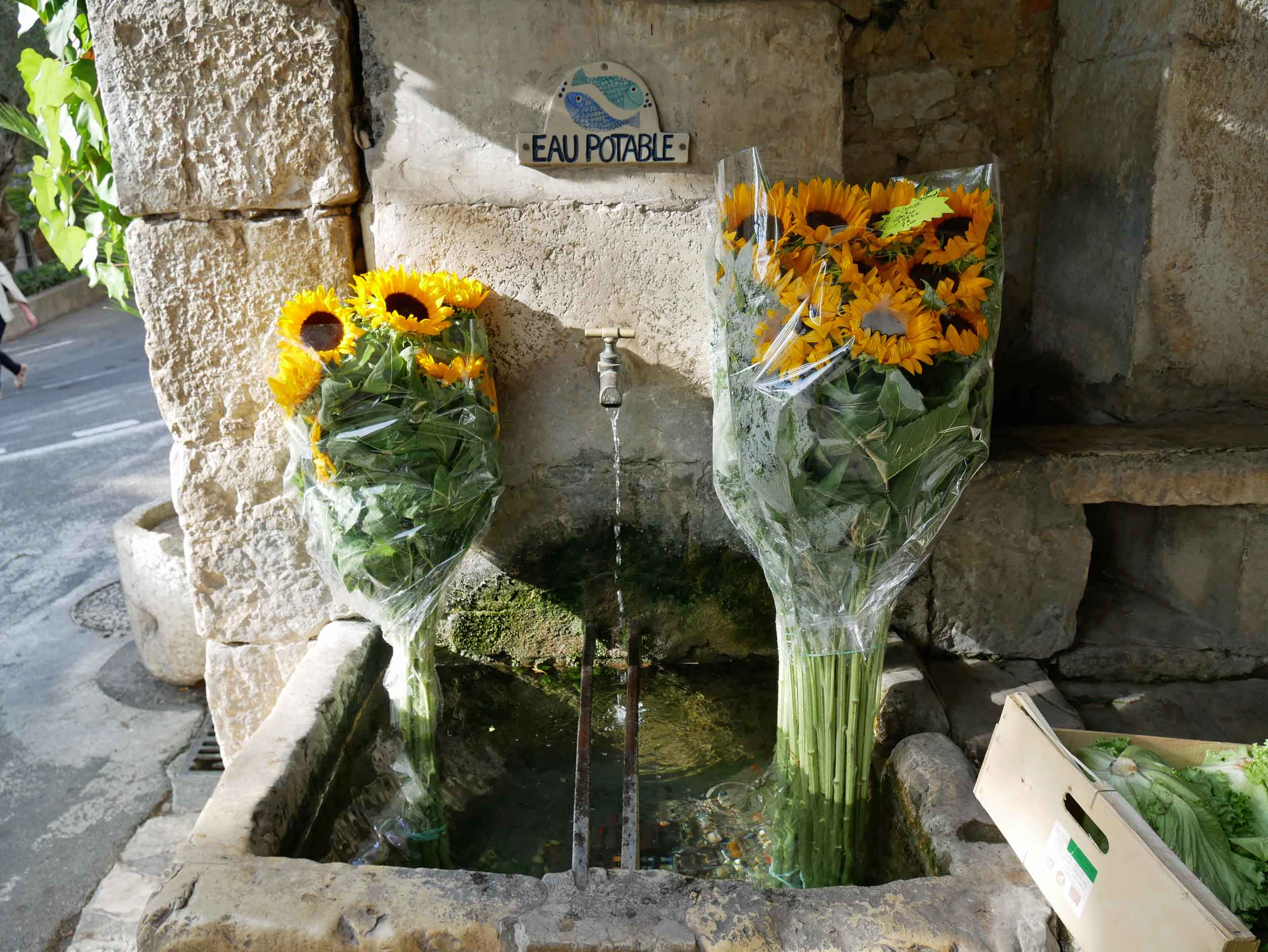 We continued to be inspired by the beauiful markets in France (St. Paul de Vence).
