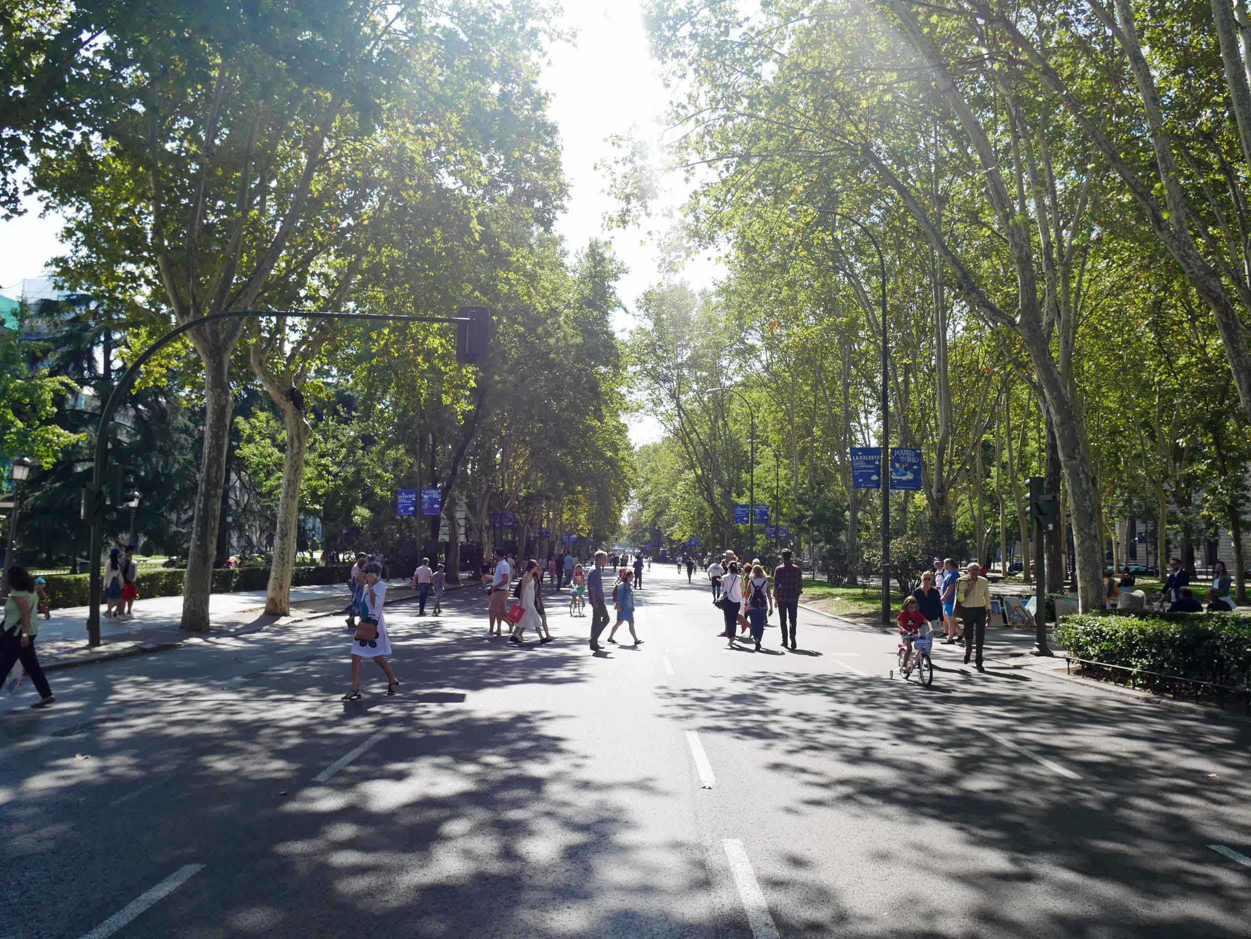 The Paseo del Prado, one of the main boulevards of Madrid, happened to be closed that morning to motor traffic allowing pedestrians to take to the streets!