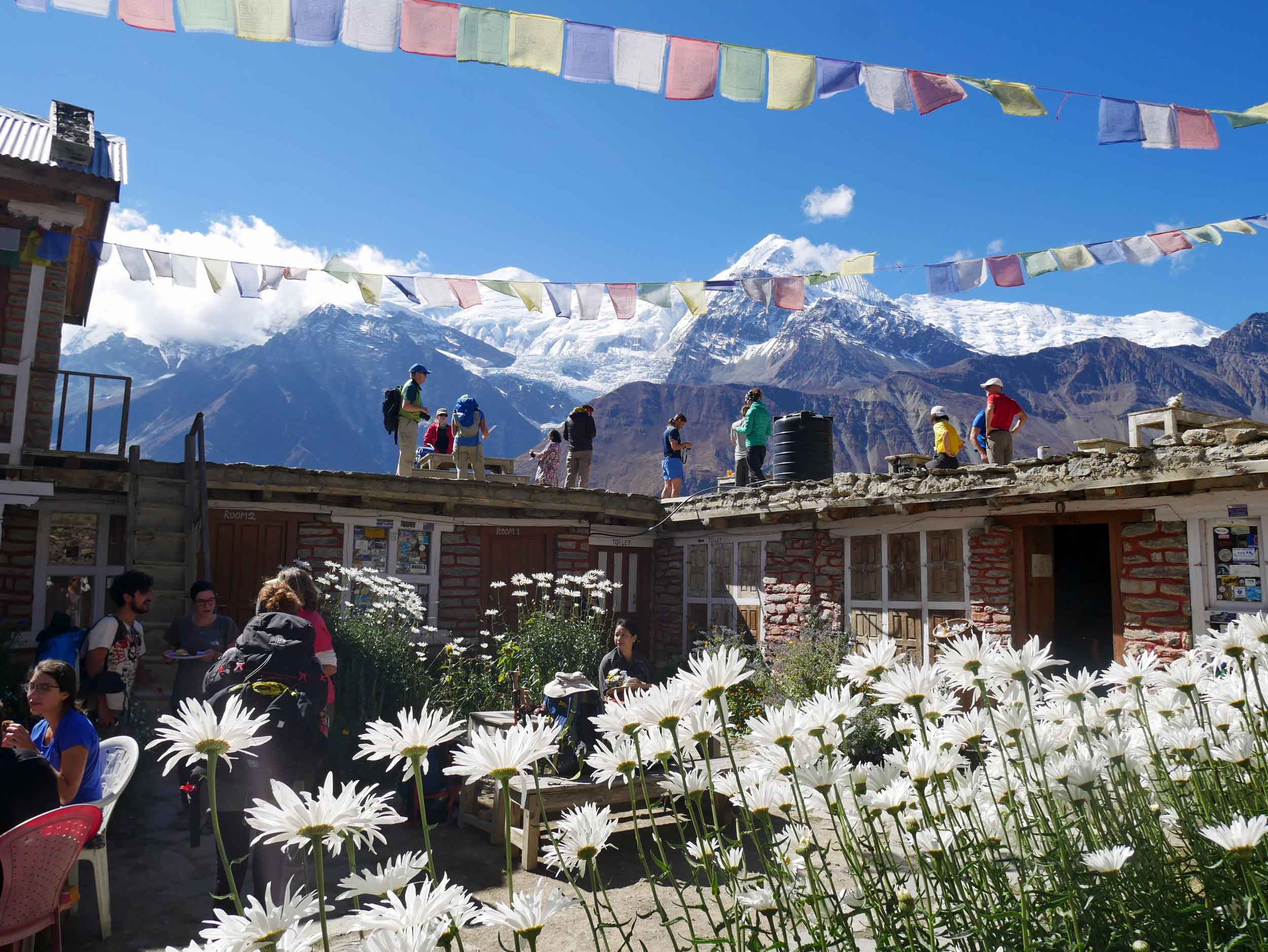 Beautiful views and adorable 'tea houses' line the circuit, making this one of the most charming multi-day treks on earth!