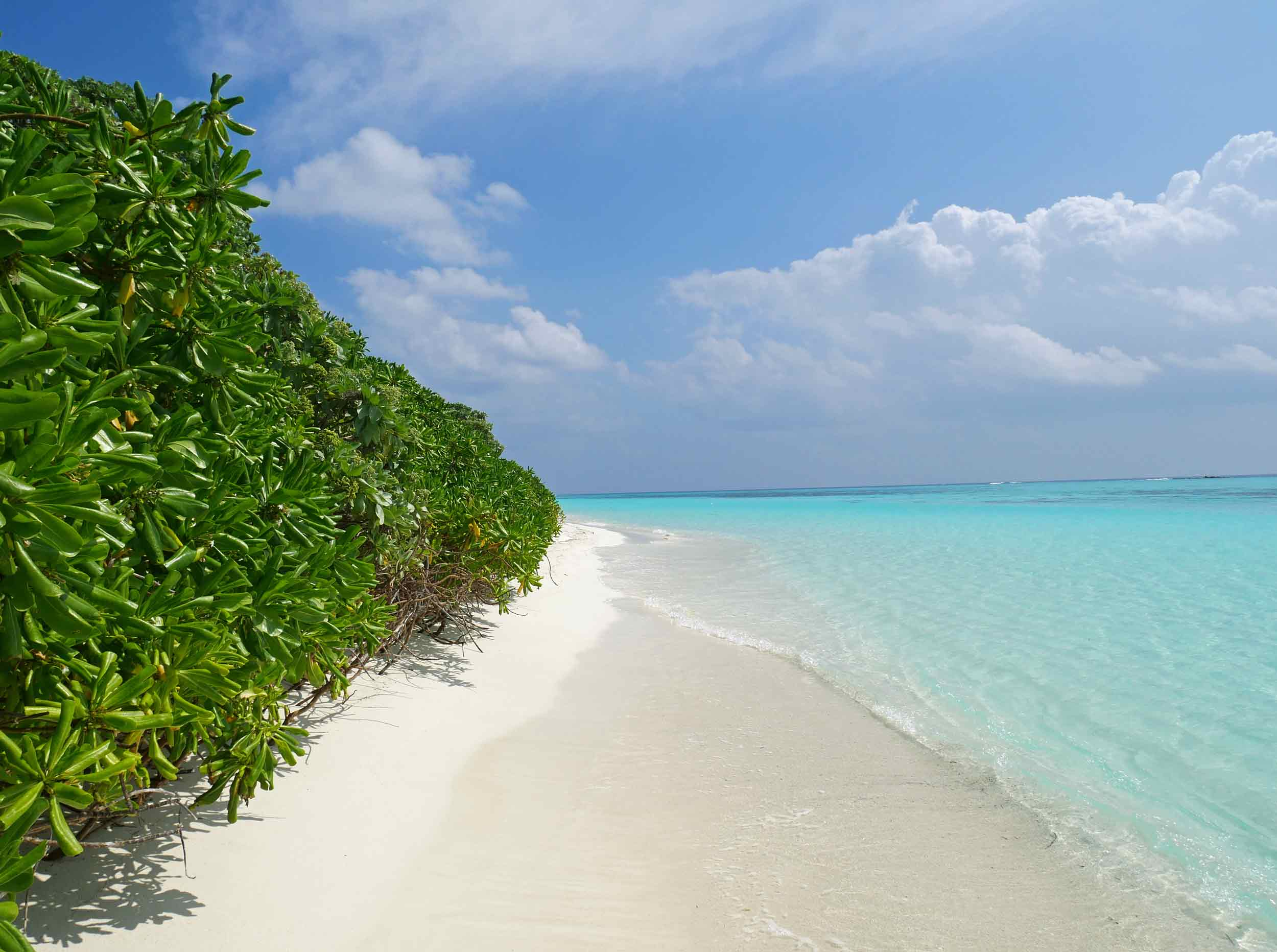 The white sand is a product of all the broken down coral that makes up the Maldives (Dec 6).
