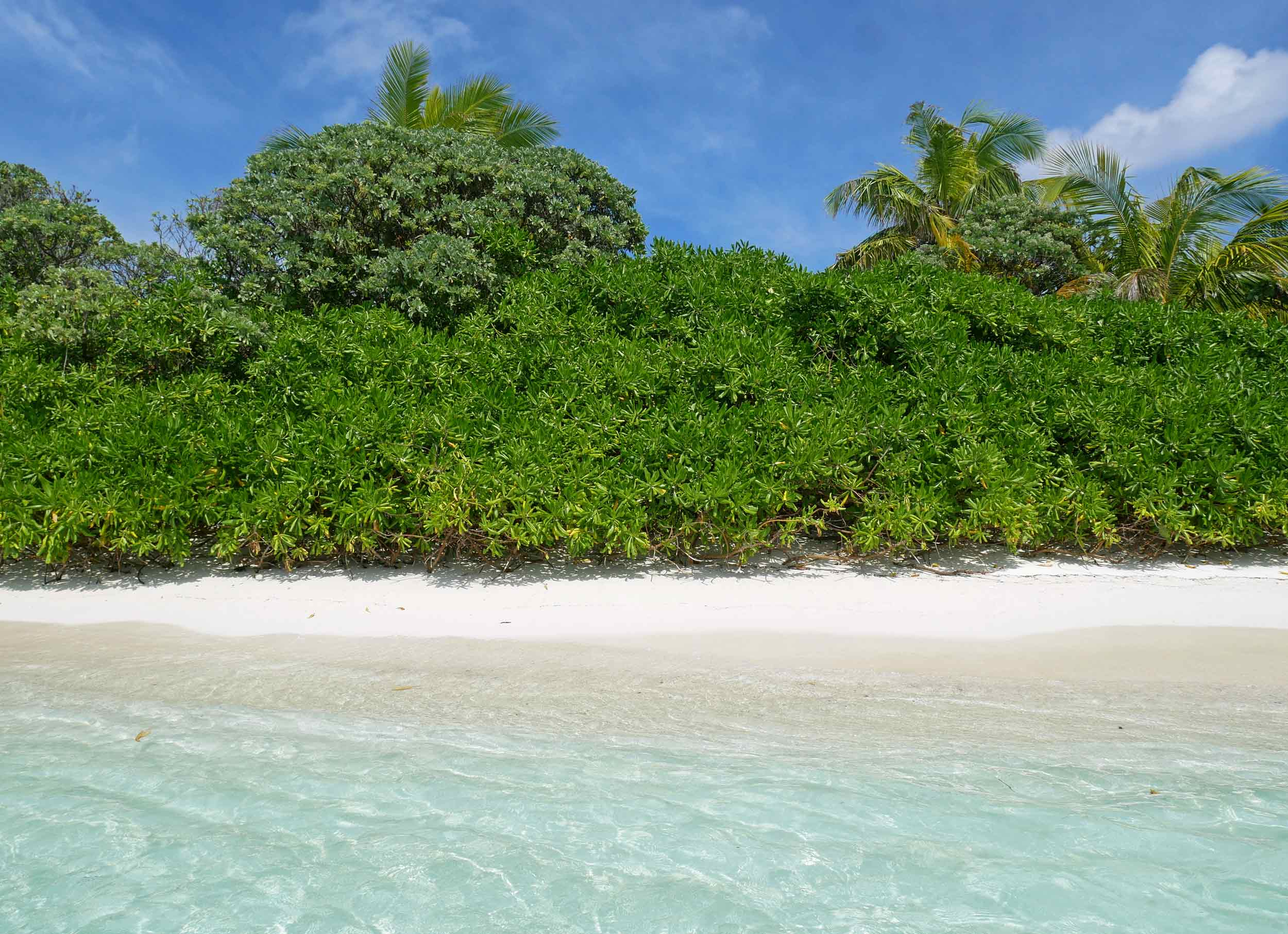 The entire island nation of the Maldives is on average just about four feet above sea level.