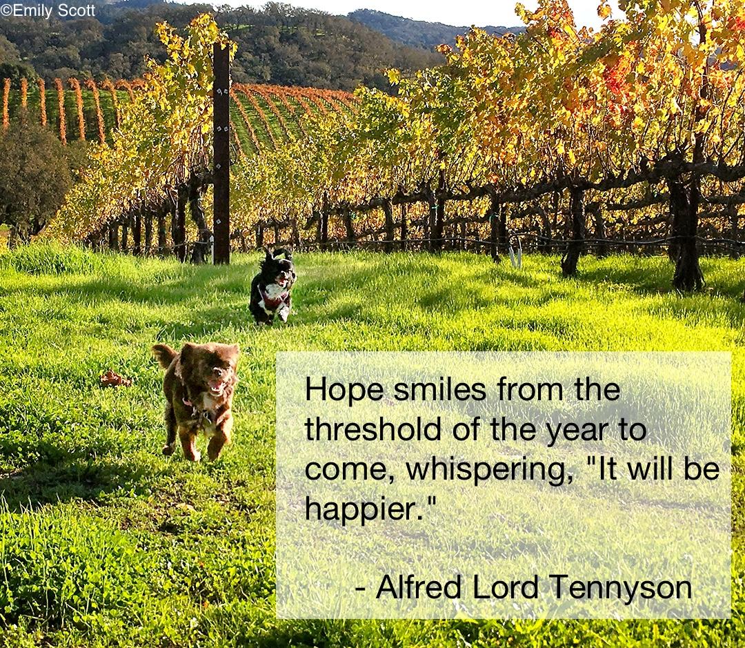 Tennyson_quote©.jpg