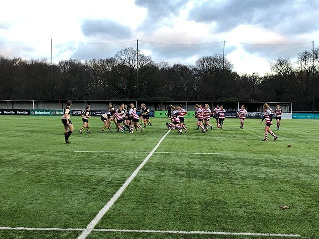 What a fantastic day at the office! Congratulations to @prfcladies for winning 74-0 against slingbacks at Roslyn Park! #sundaysaremadeforrugby #sundayfunday #itsnotworkifyouloveit #graduatesportstherapist #sportstherapist