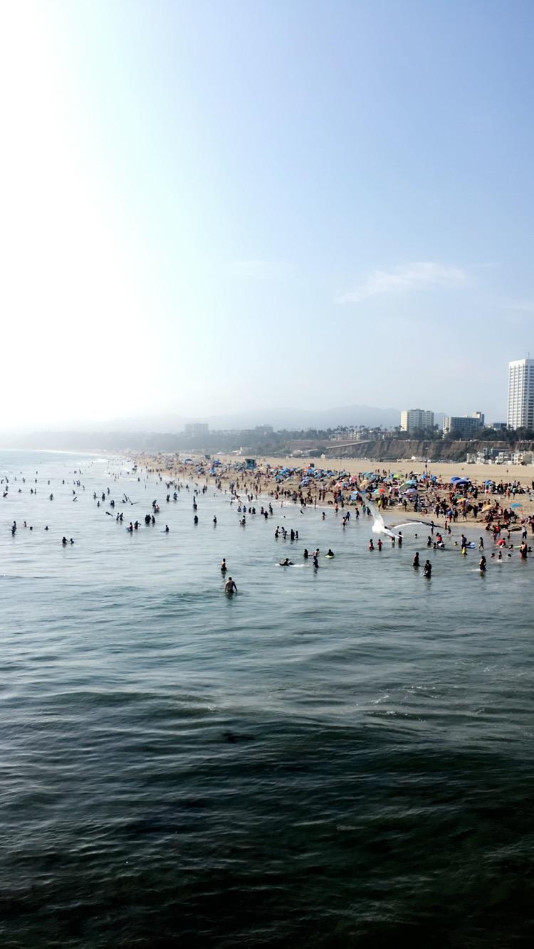 Pier Views - Santa Monica Pier