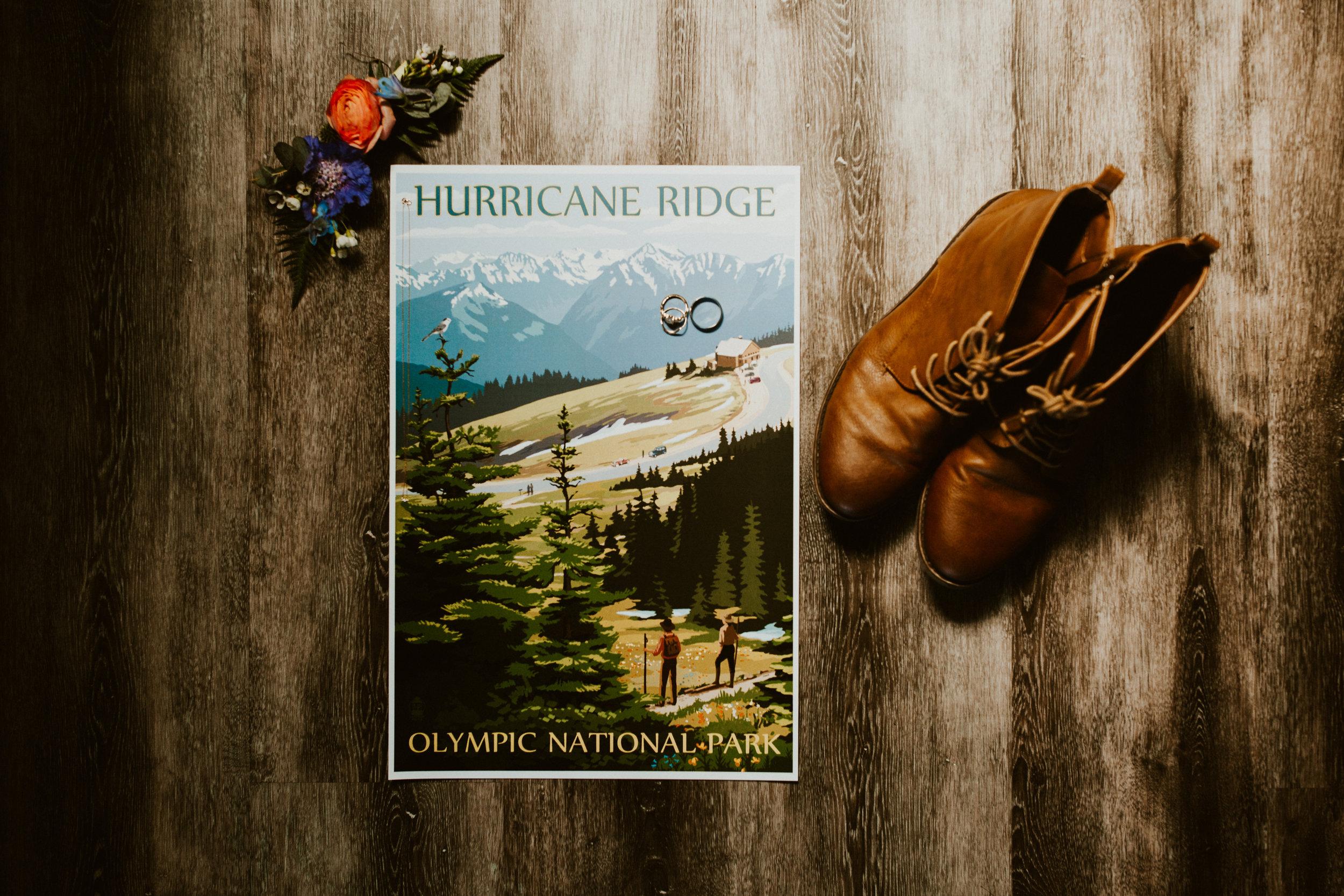 HurricaneRidgeElopement-12.jpg