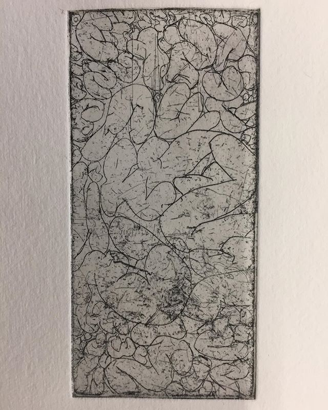 Tiny plate I have had grounded and in my pencil case for months. I went in and added some line work over the texture before spraying on an aquatint and step etching. The red proof features a surface roll. Definitely some issues with paper dampness or pressure but a fun refresher on spraying an aquatint nonetheless! . . . . .  #etching #intaglio #print #printmaking #aquatint #contemporaryprintmaking #guts #intestine #drawing #greenprintmaking #zeamays
