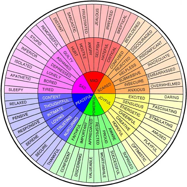 """This is """"The Feelings Wheel"""" by Dr. Gloria Willcox, it helps to identify the root of feelings by tracing back to one of the main emotions in the center of the chart."""