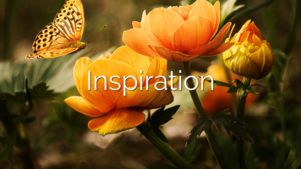 - Weekly inspiration and encouragement to keep you motivated and moving (no matter how long your week has been!) It's hard to inspire yourself. On The Path, you don't have to!