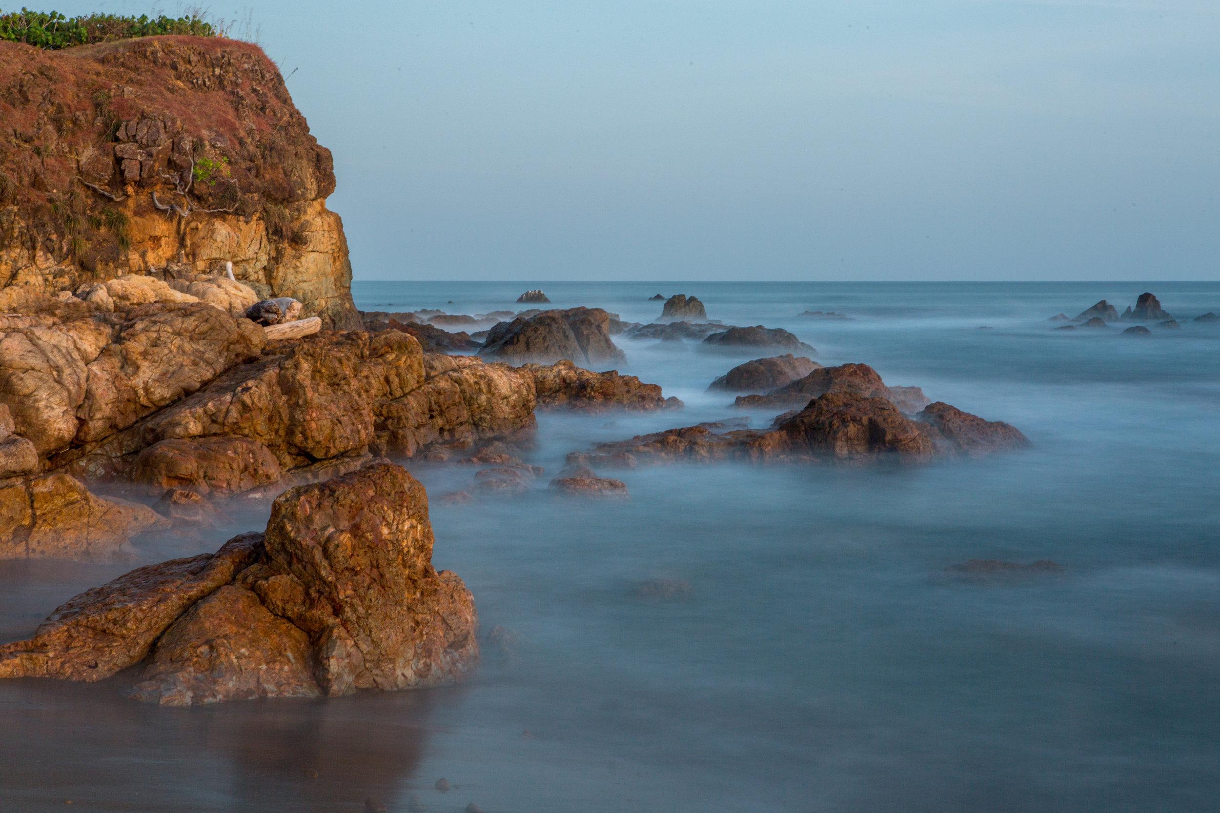 Coastal and Mangrove-1.jpg