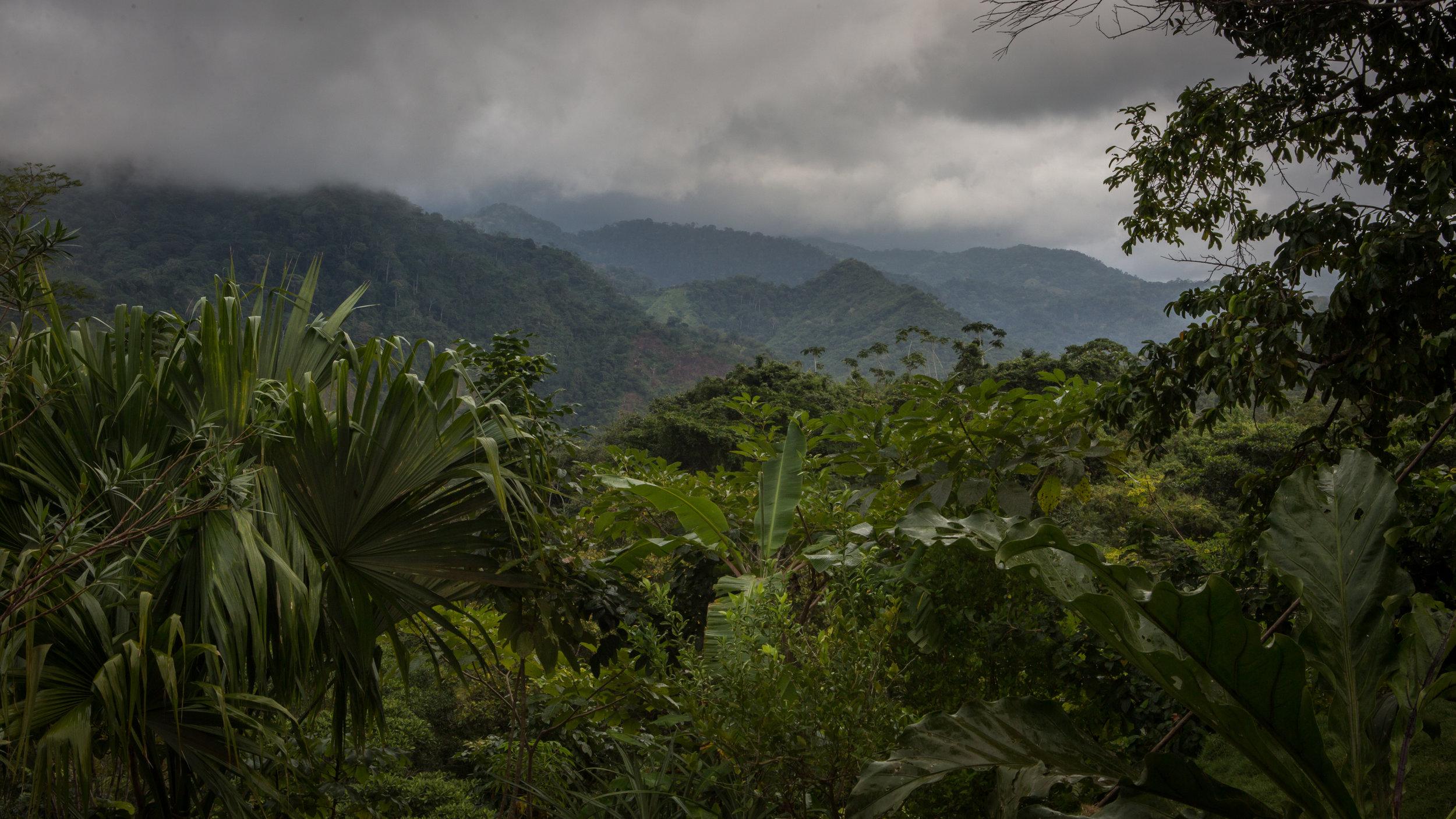 Malteser Colombia-2.jpg