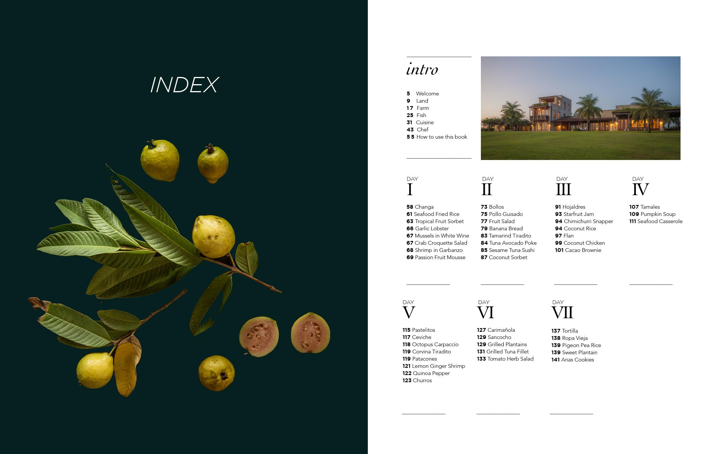 Cookbook Pages 1027182.jpg