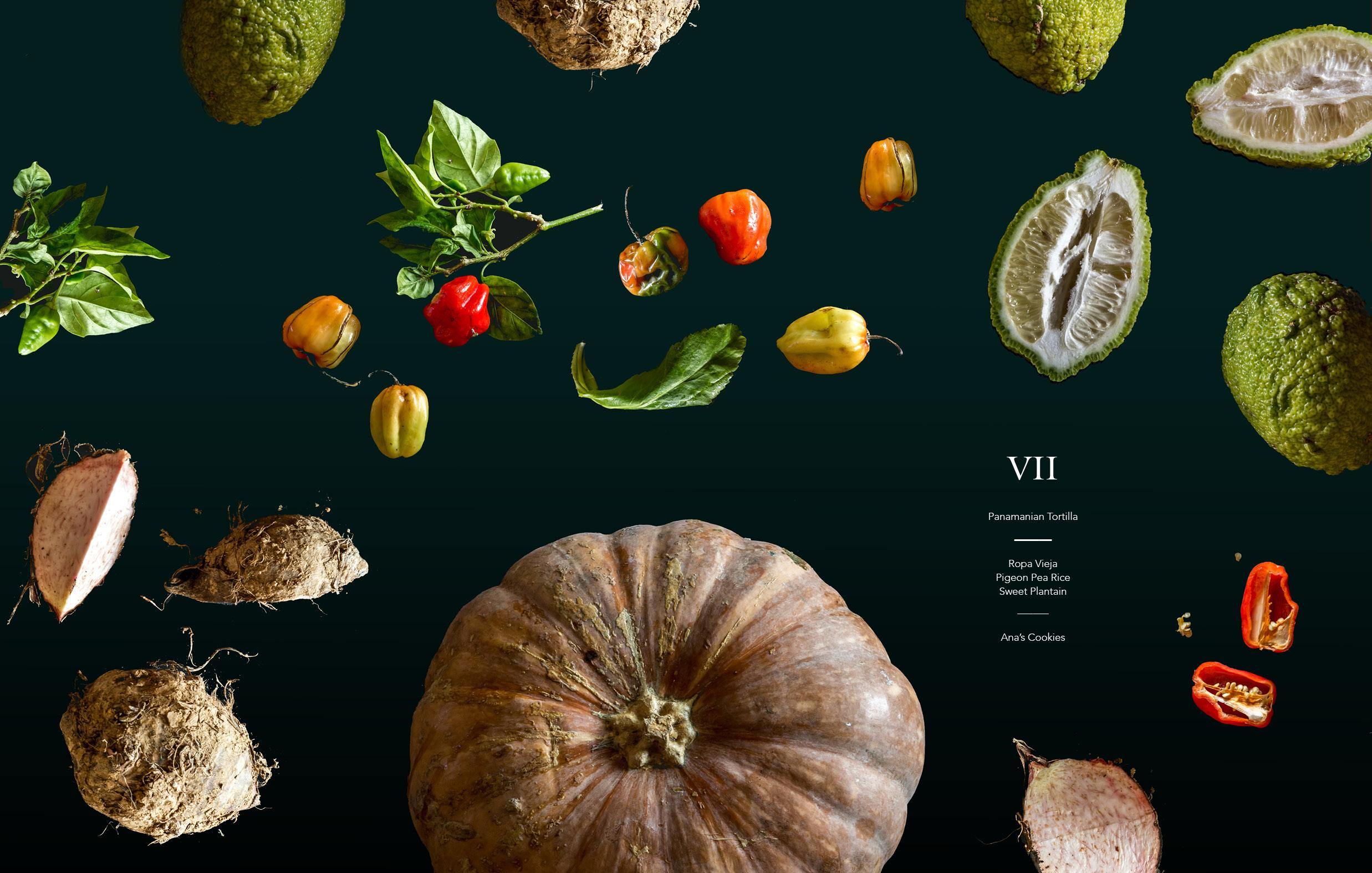 Cookbook Pages 10271868.jpg
