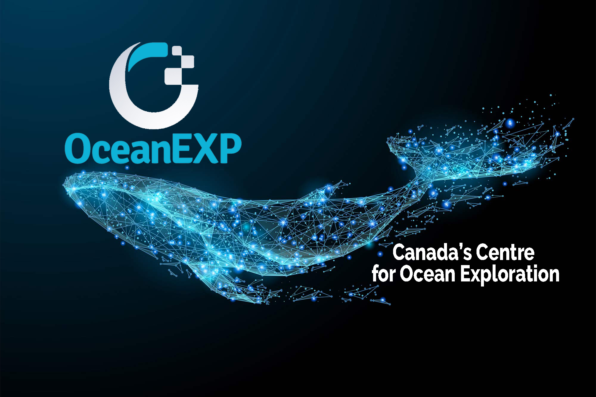 OceanEXP Whale Screen Saver.jpg
