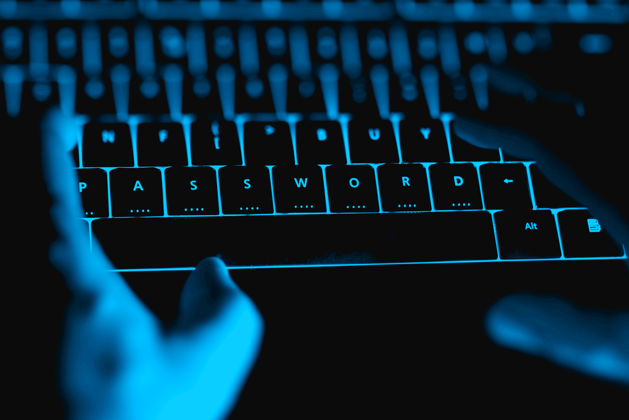 Fight Cyber Crime To Protect Your Business