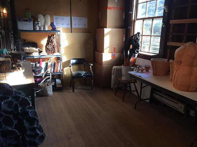 Oh man the morning light up here is so gorgeous! #studio #headlandscenterforthearts