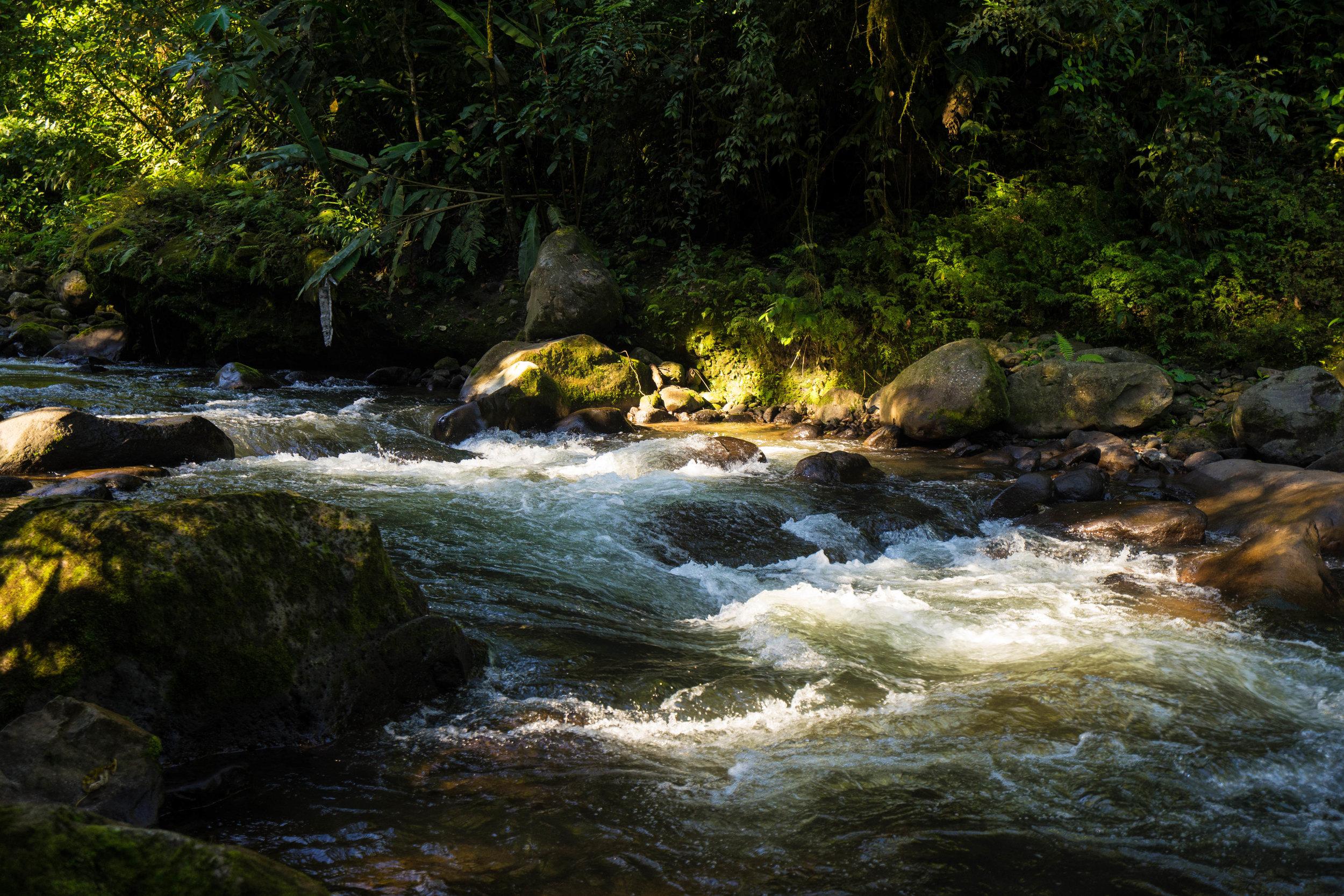 Colores del río