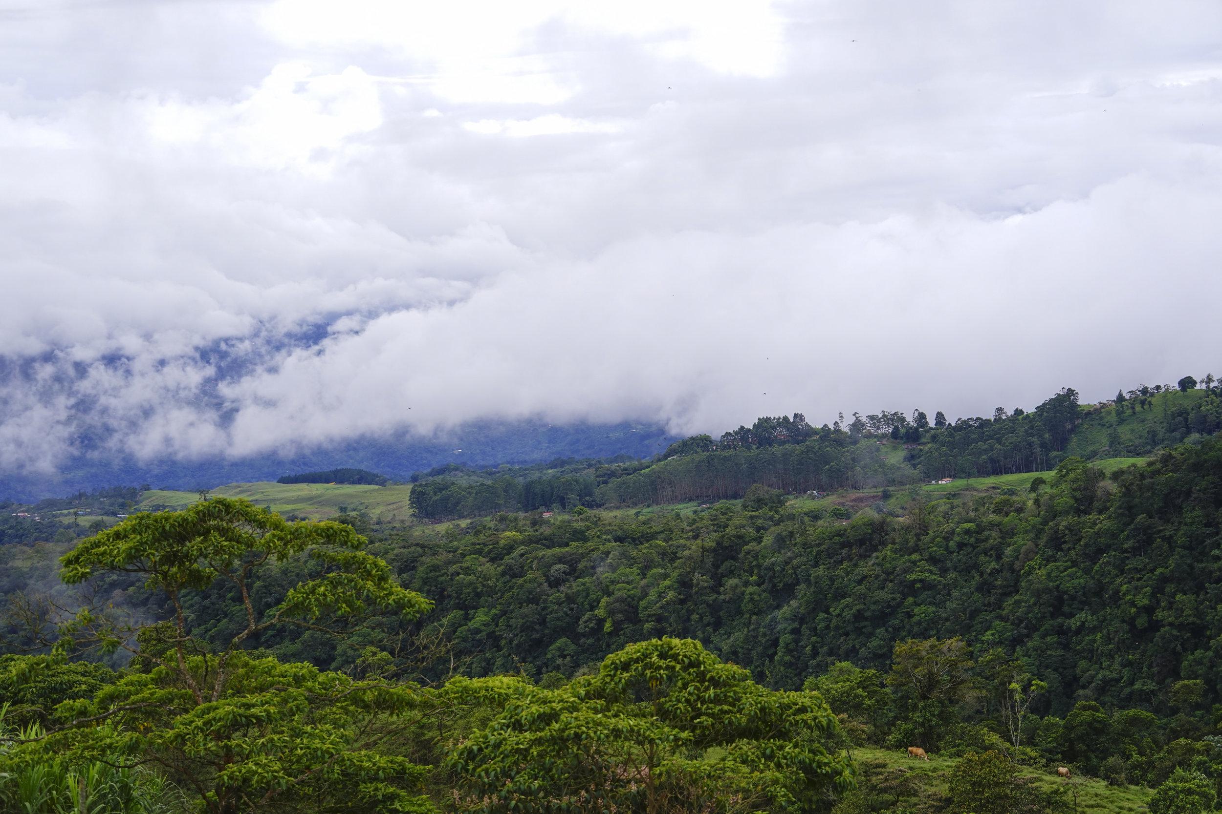 vista del acantilado