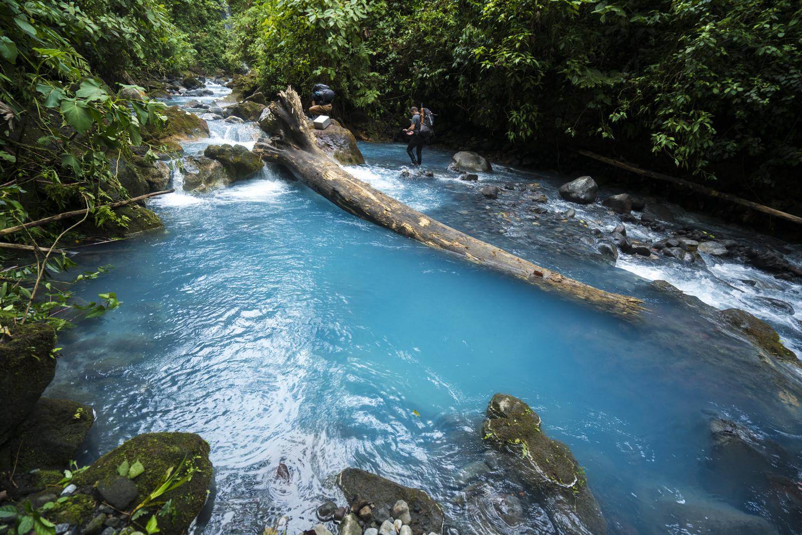 Árbol caido sobre río Azul