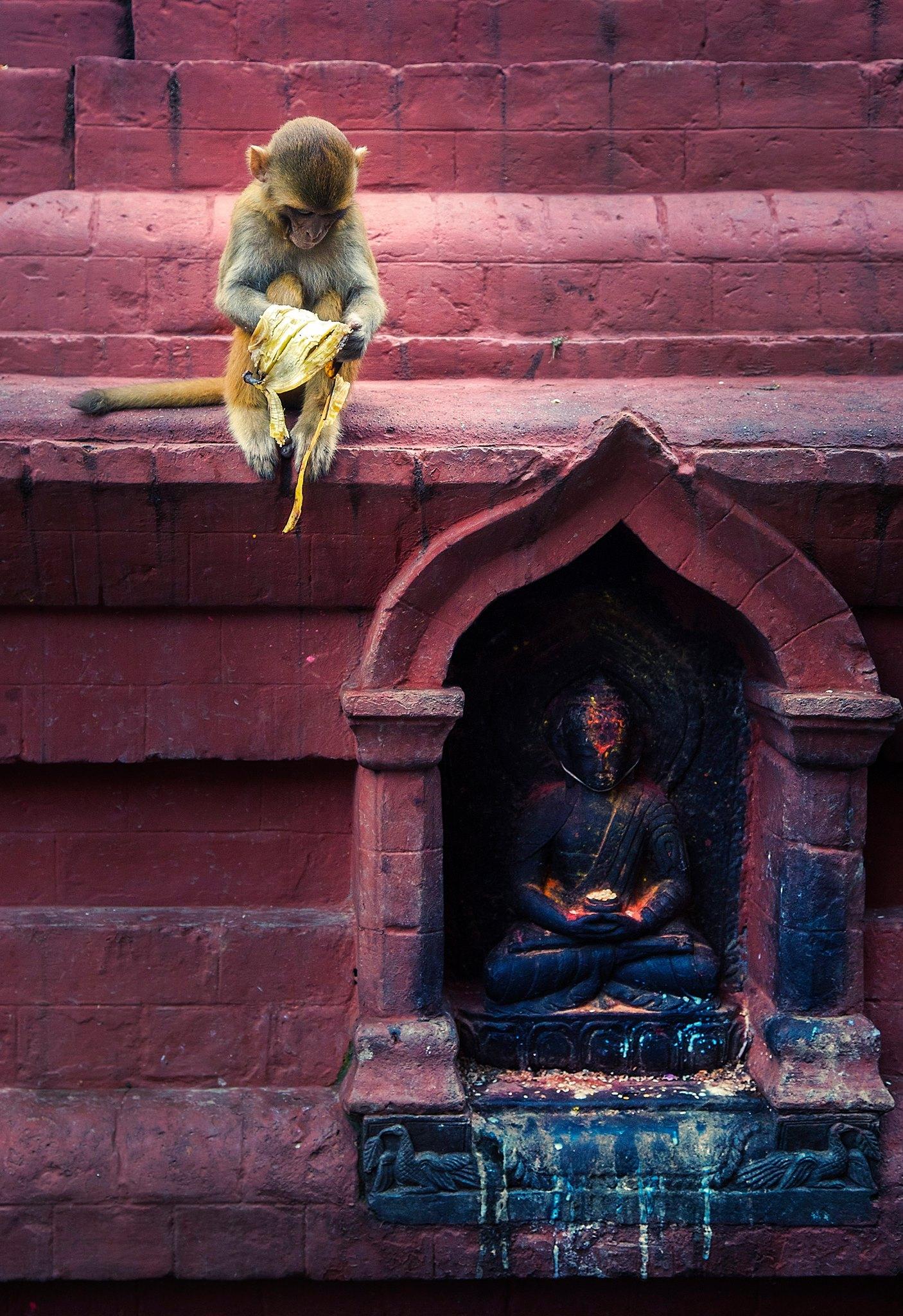 Simon+Needham+Humanitarian+Photography+Nepal+11.jpg