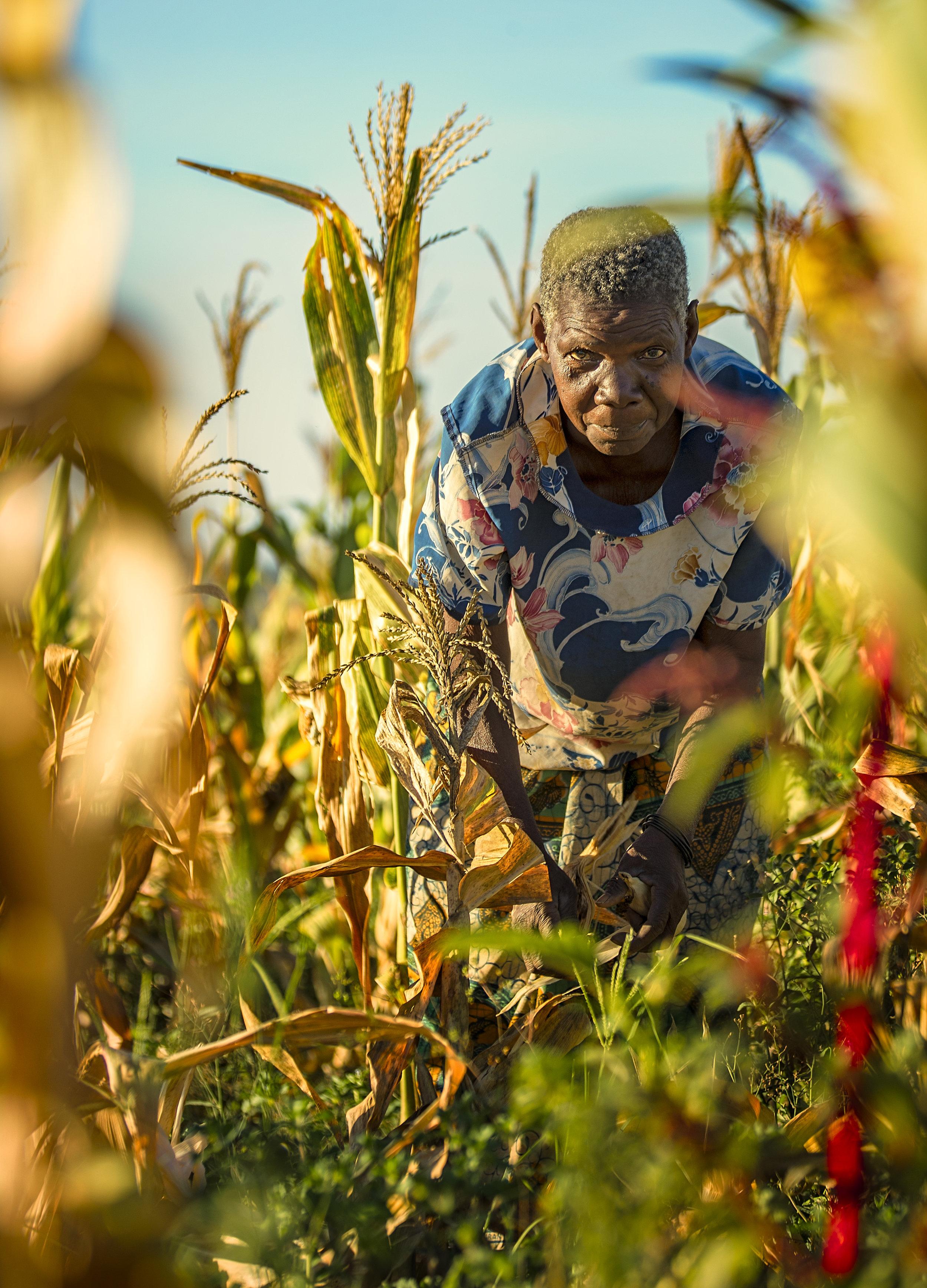 Simon+Needham+Photography+Tanzania+14.jpg
