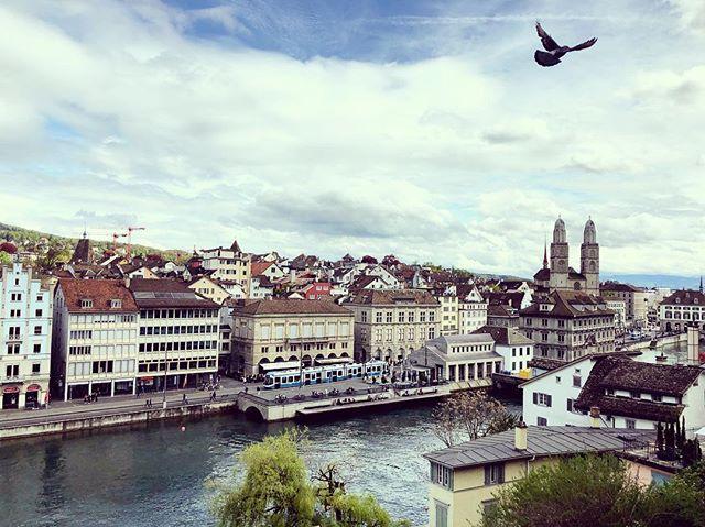Last day in Zurich