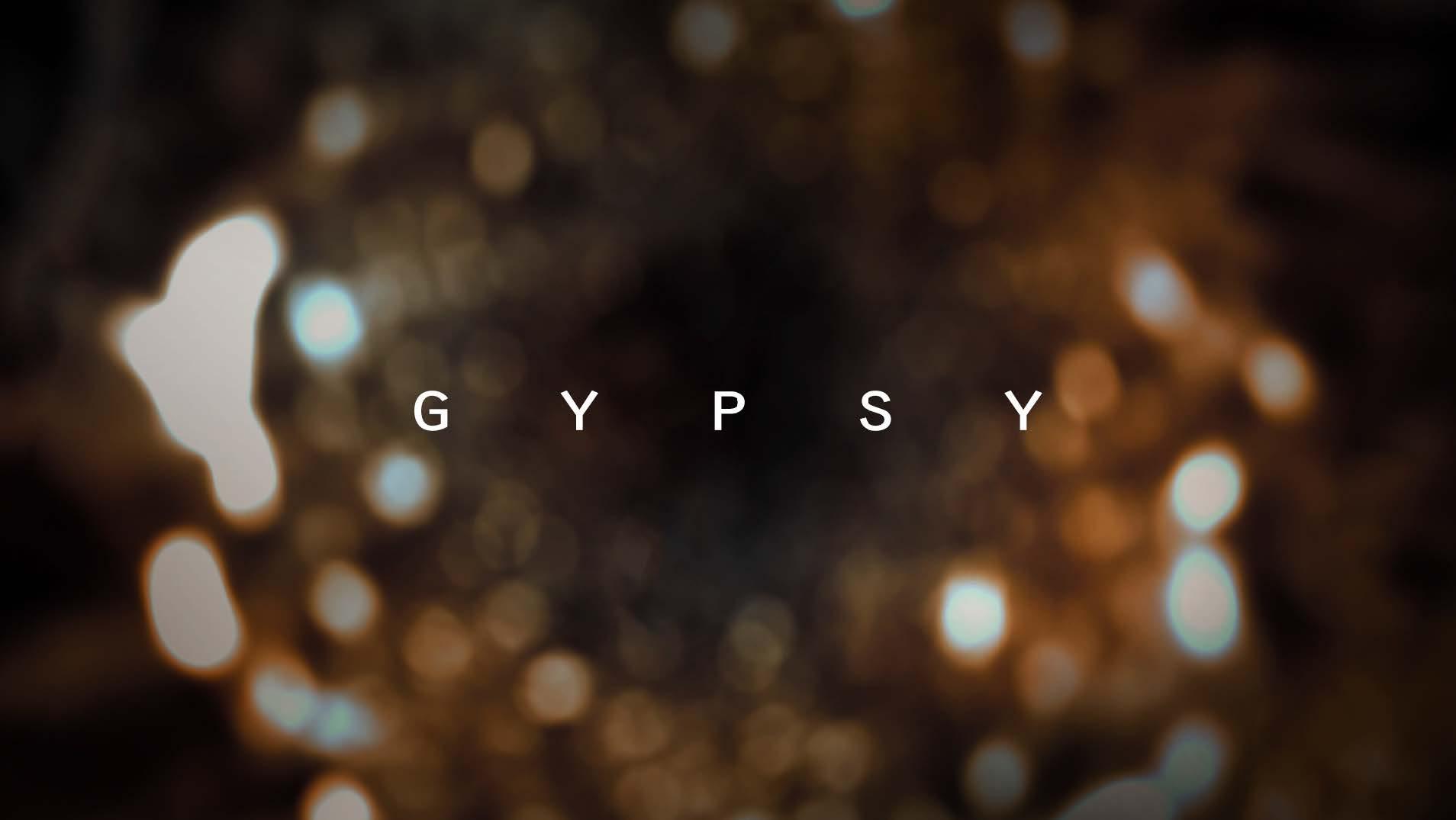 IF_GYPSY_MT_v5_111016e.jpg