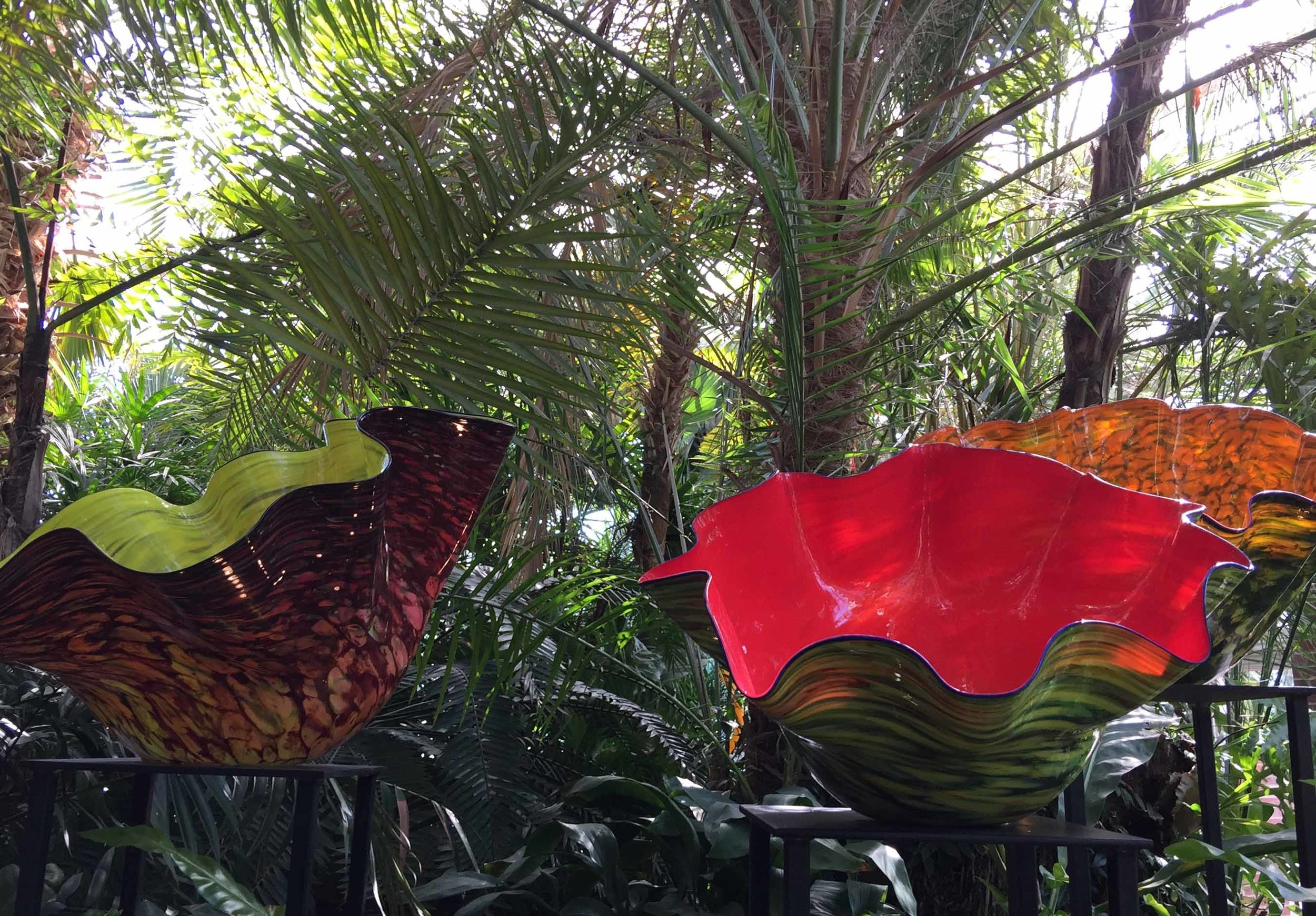 phipps-chihuly.jpg