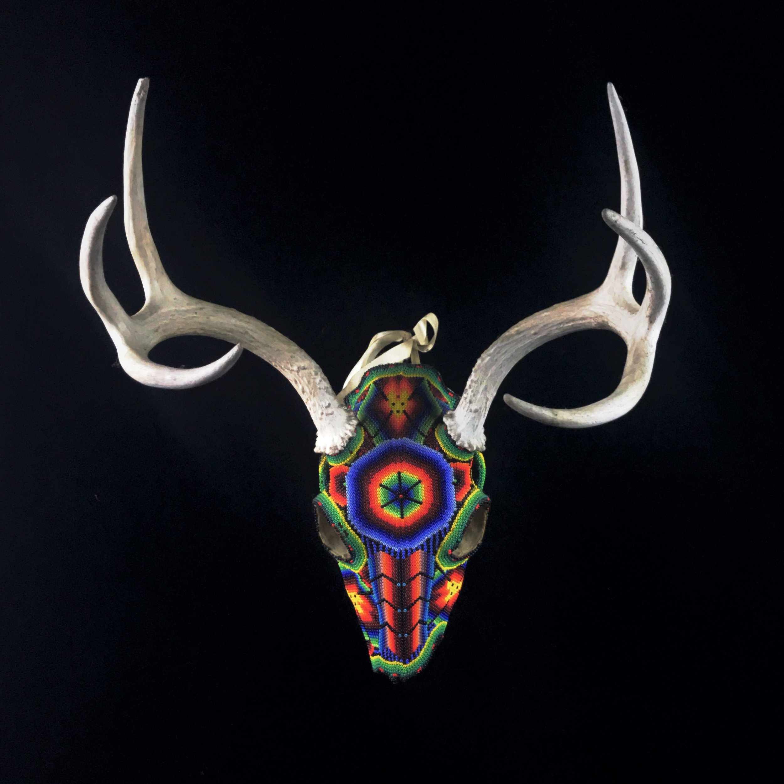 Beaded Three-Point Whitetail Deer Skull   - Huichol Tribe