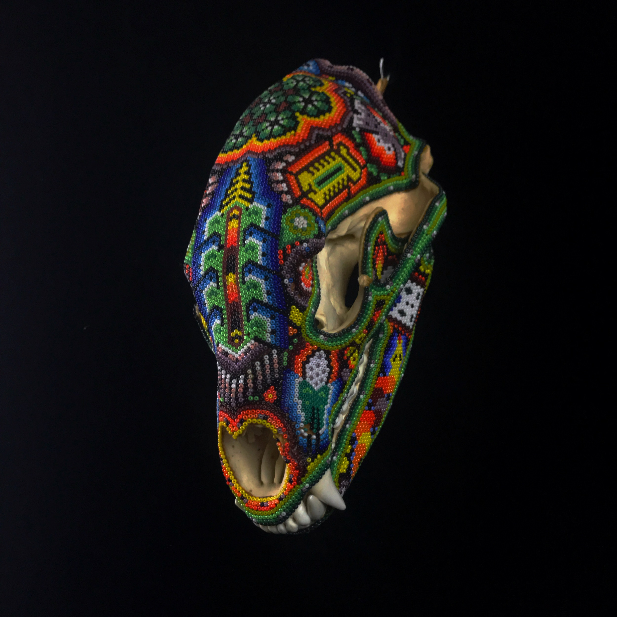 Beaded Montana Bear Skull   - Huichol Tribe