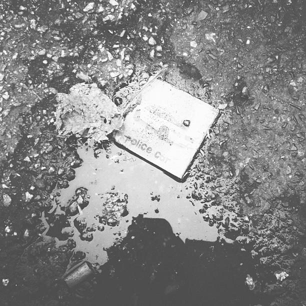 ALBUM-GRIS-500.jpg